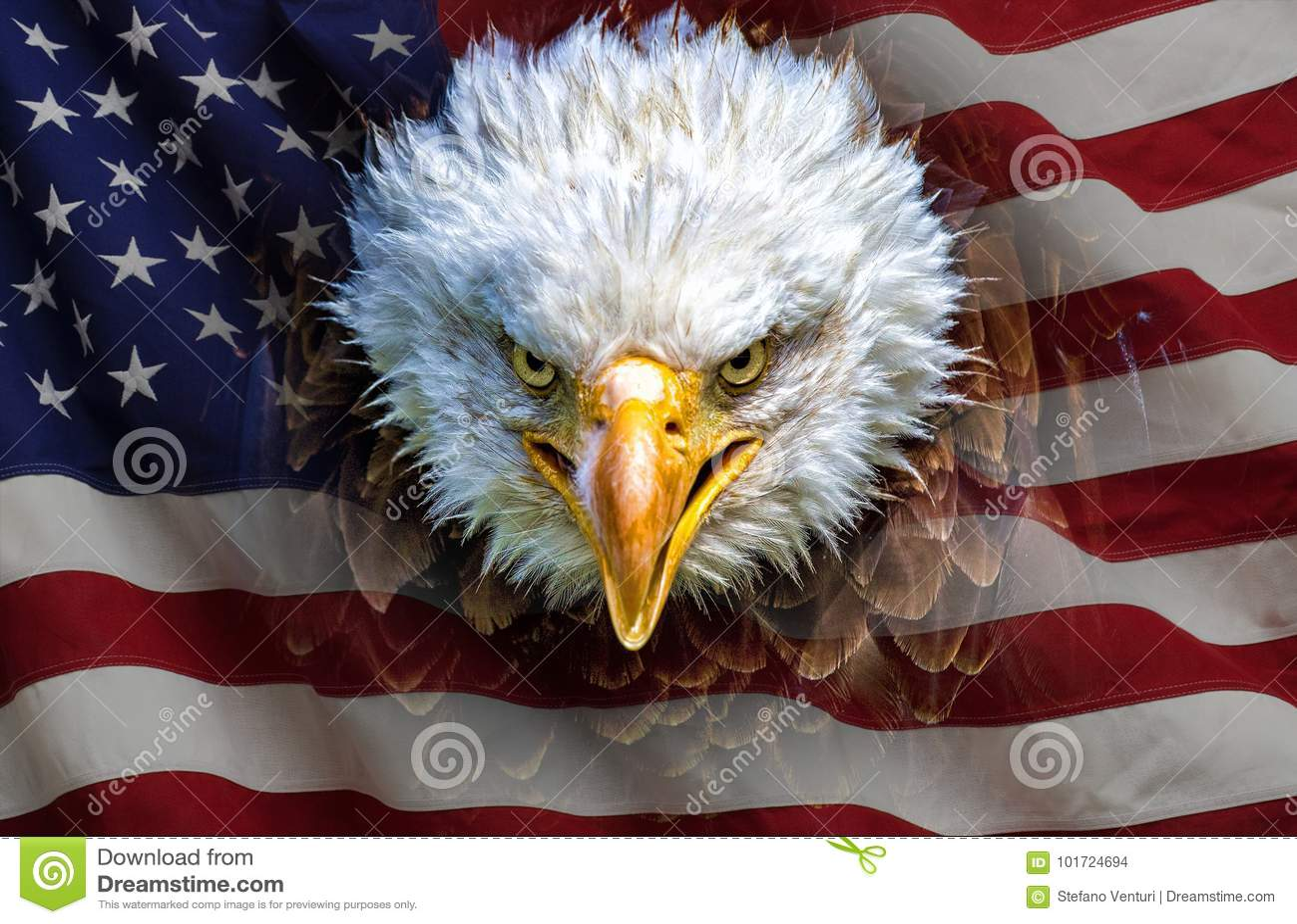 Een boze Noordamerikaanse kale adelaar op Amerikaanse vlag