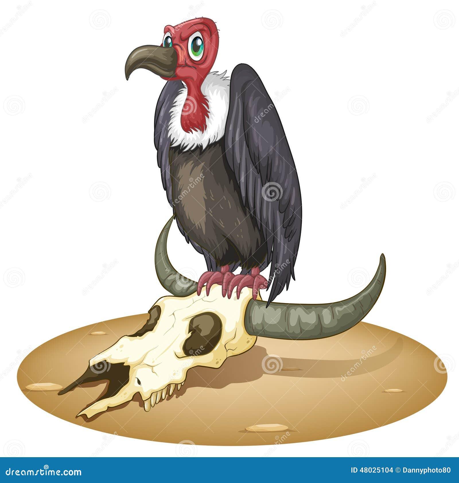 Een boze vogel boven het dierlijke hoofd