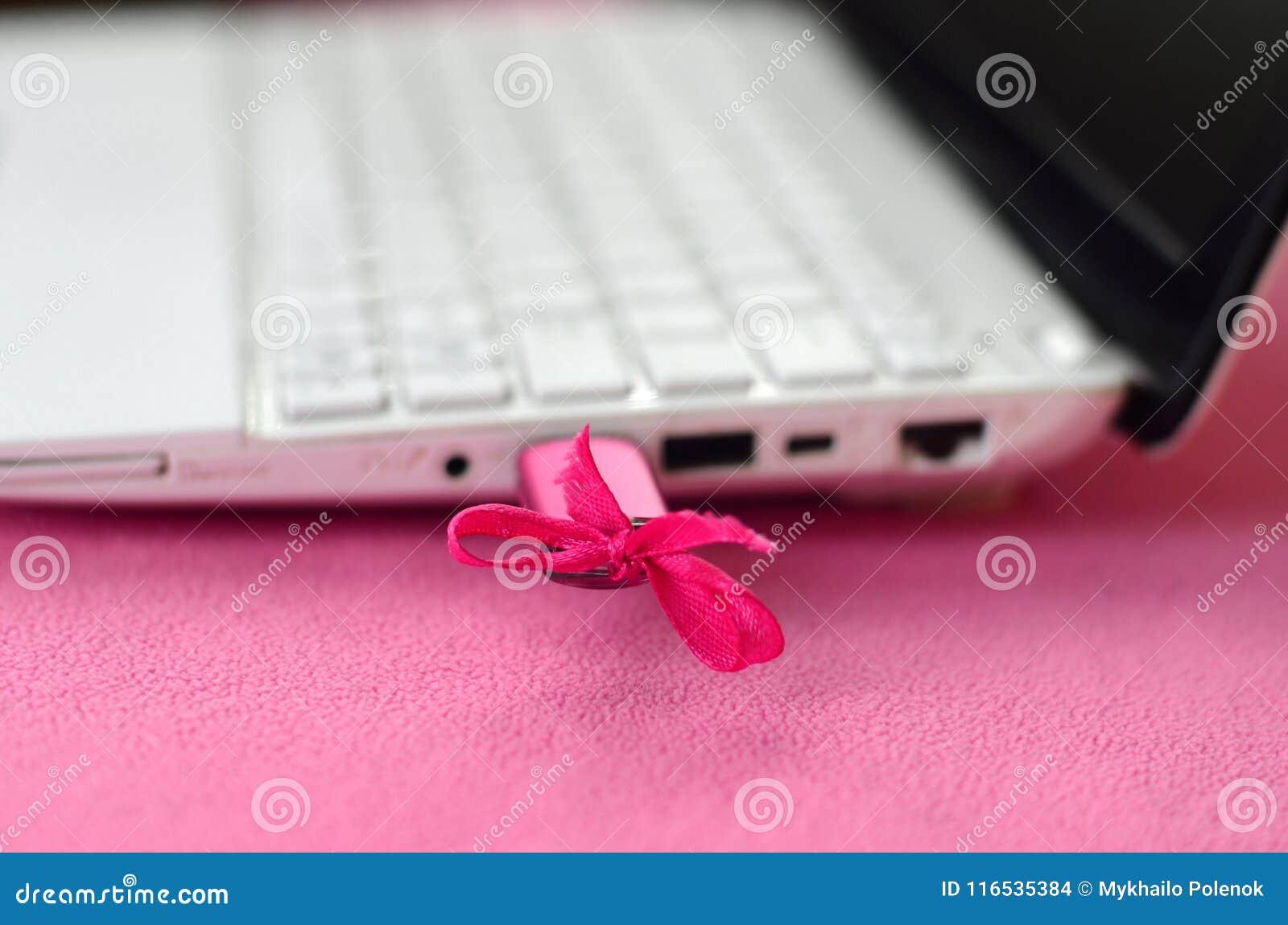 Een briljante roze USB-flitsaandrijving met een roze boog wordt verbonden met witte laptop, die op een deken van zacht en pluizig