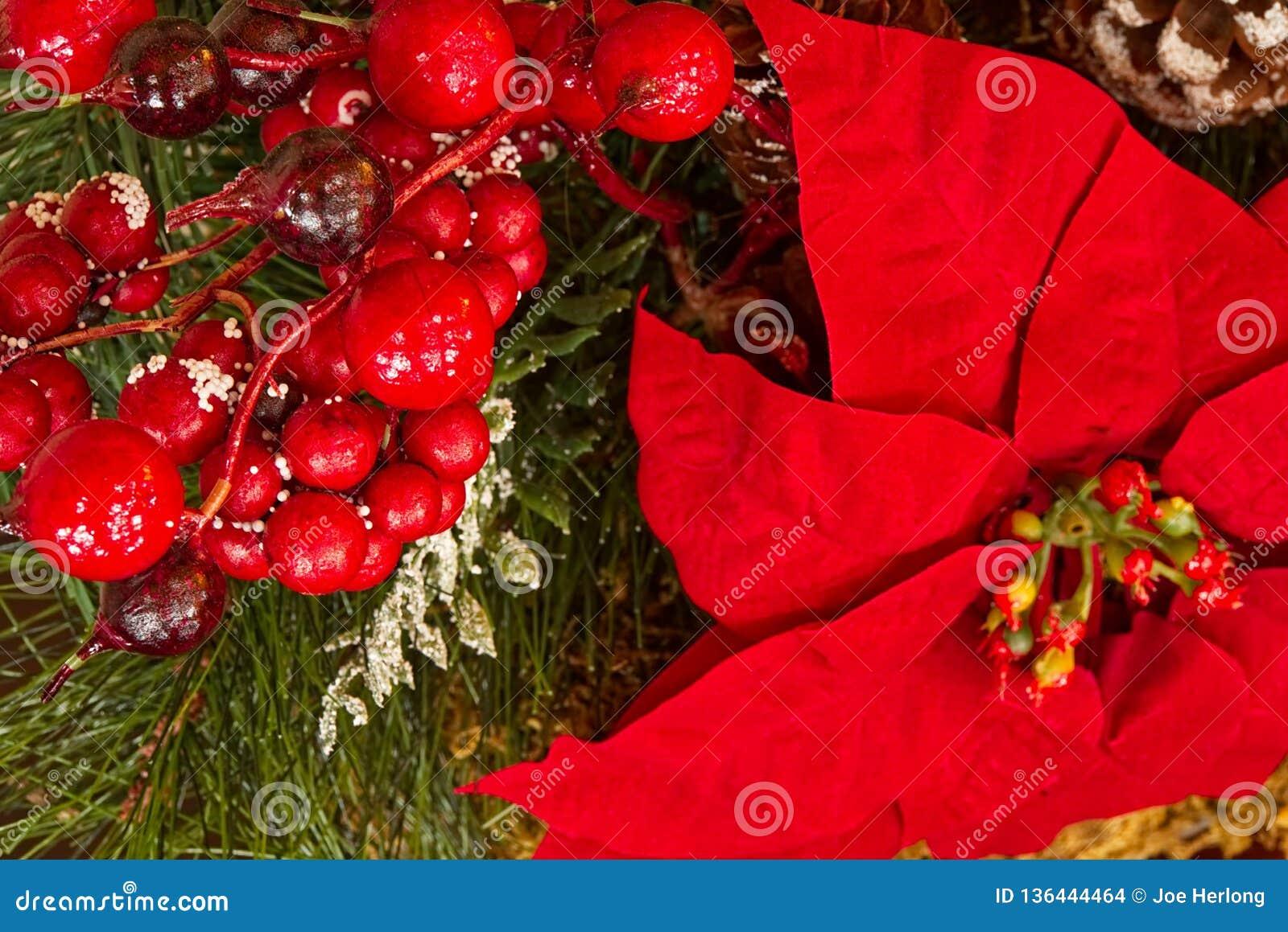 Een close-up van Kerstmisdecoratie met groen, poinsettia, en rode bessen