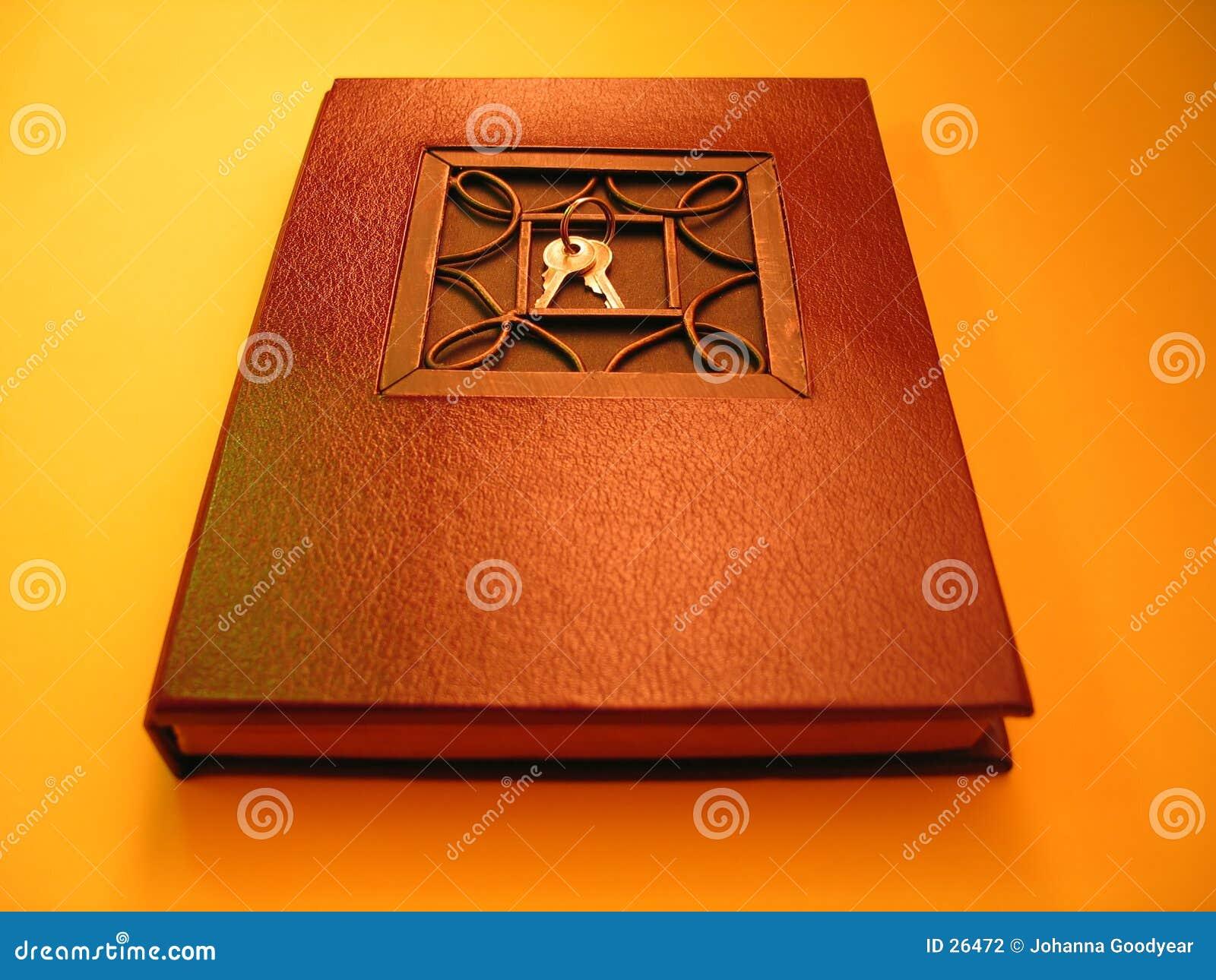Een dagboek