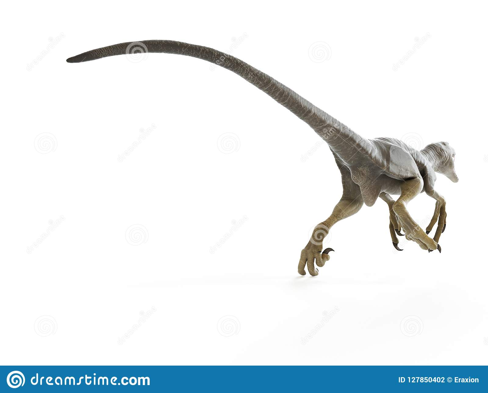 Een dakotaraptor
