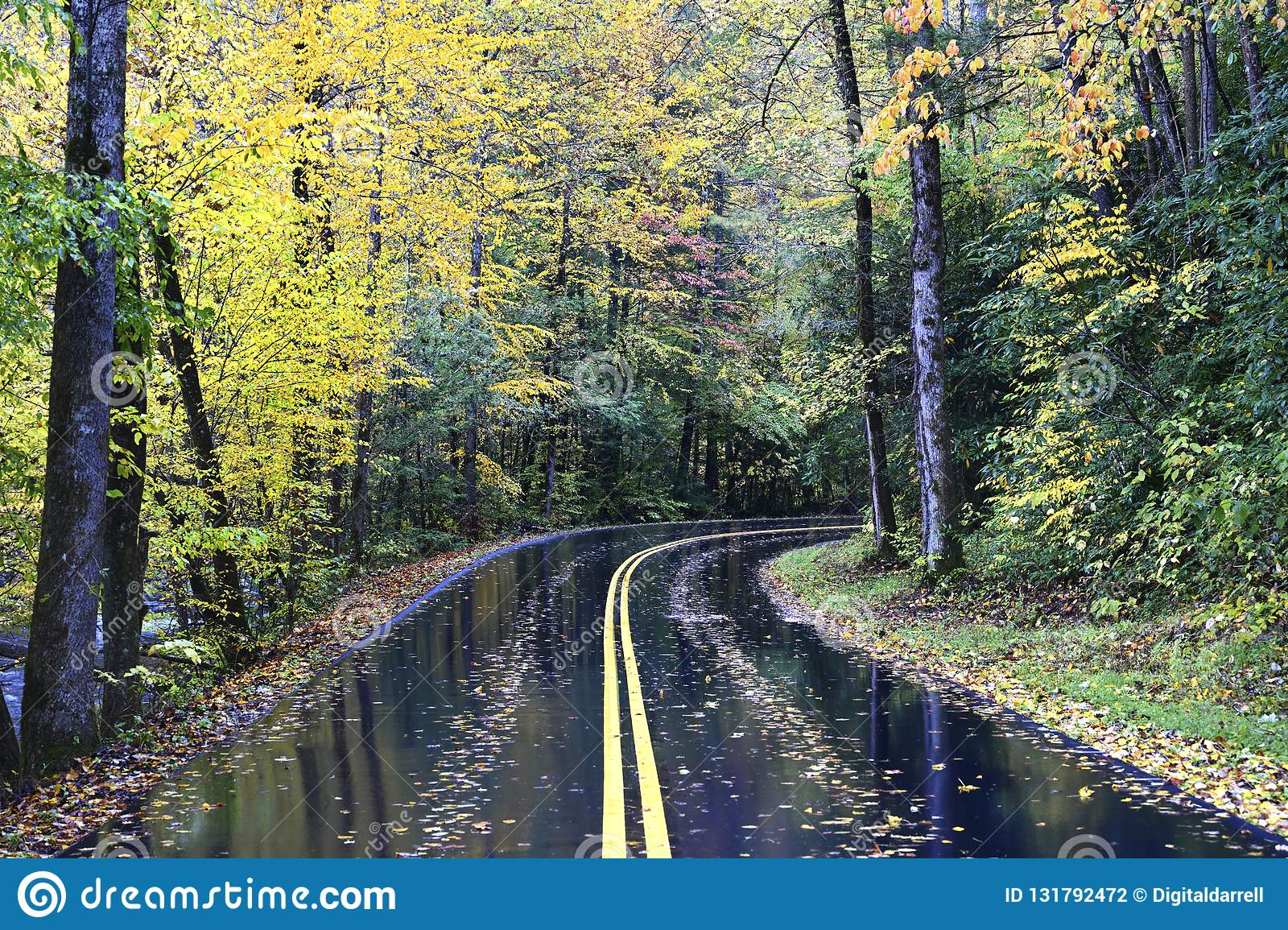 Een de herfstweg in Great Smoky Mountains, Tennessee, de V.S.