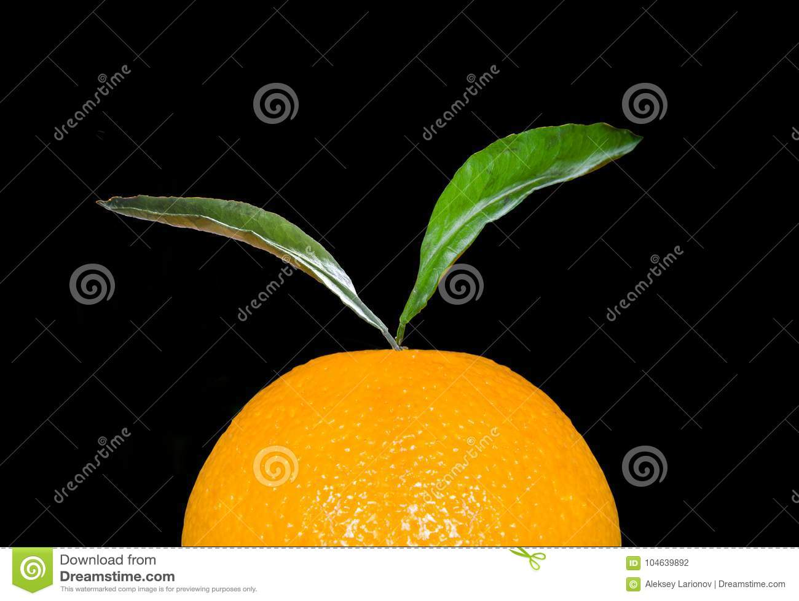 Download Een Deel Van Een Sinaasappel Met Een Blad Stock Foto - Afbeelding bestaande uit vers, citrusvrucht: 104639892