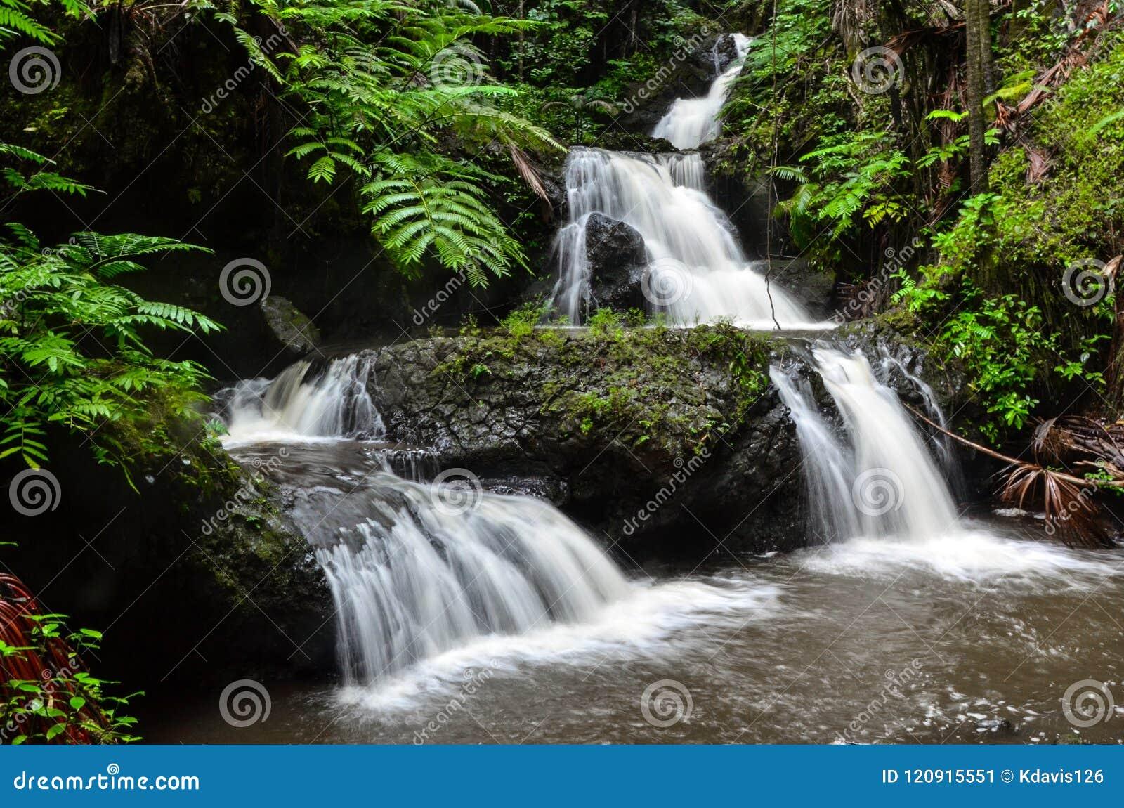 Een Draperende Melkachtige Hawaiiaanse Waterval