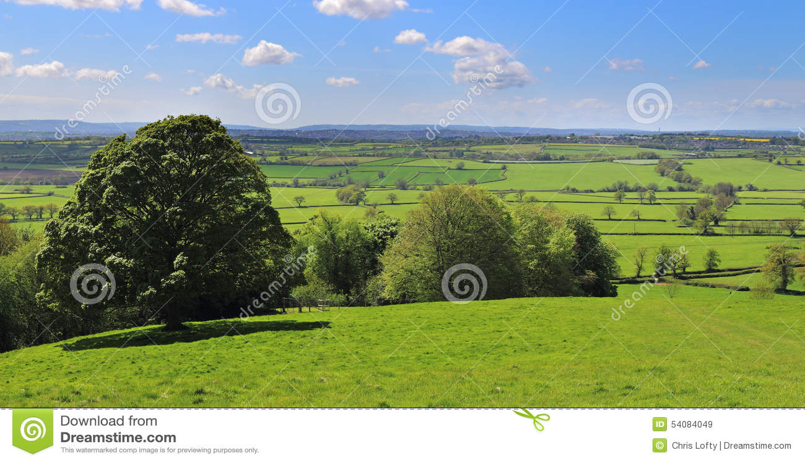 Een Engels Landelijk Landschap in Somerset