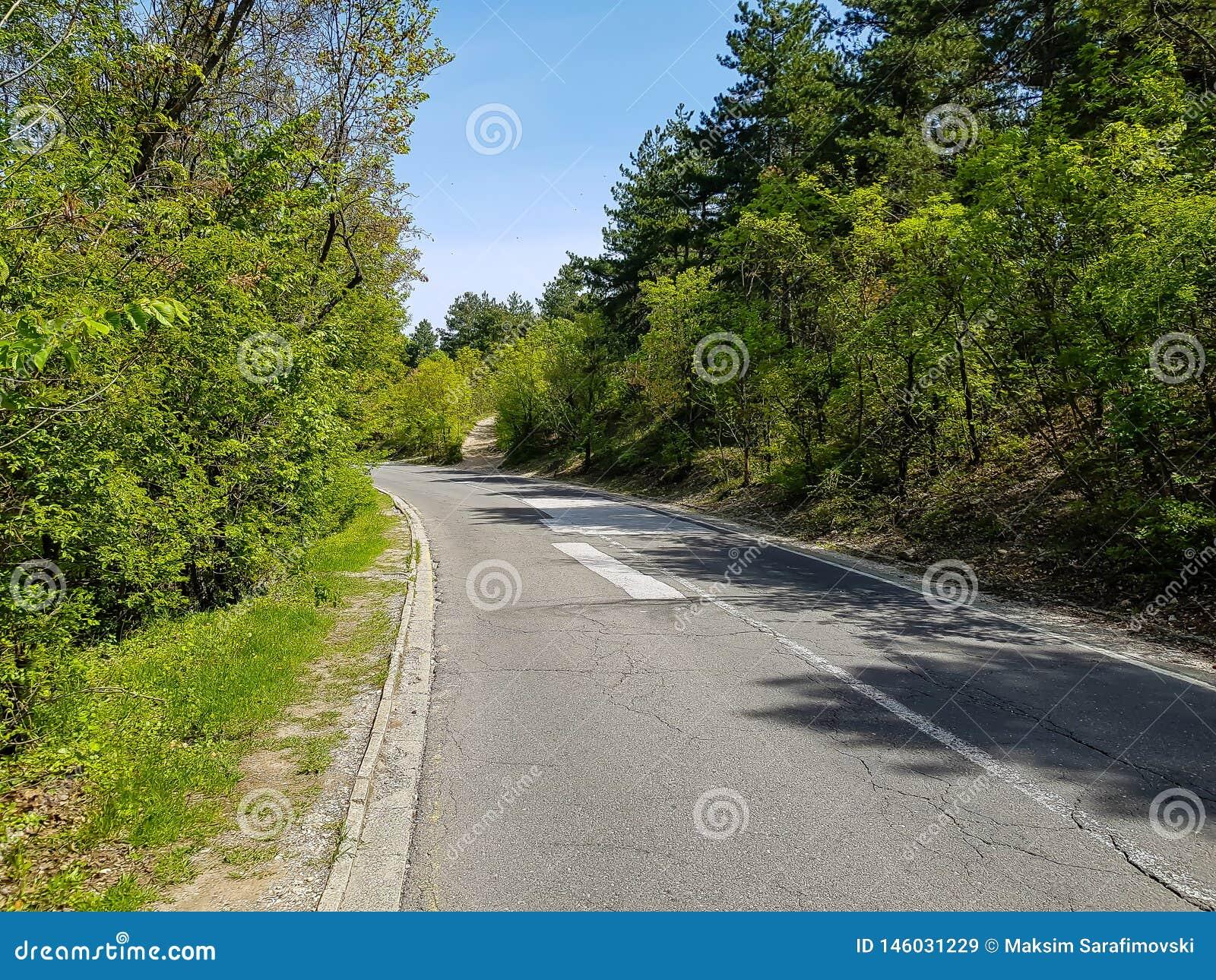 Een foto van herstelde weg in het bos