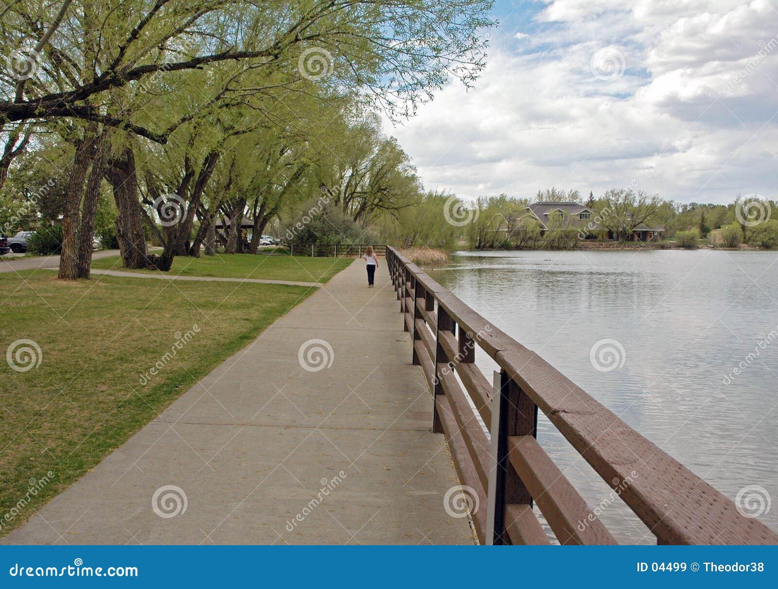 Een gang in het park