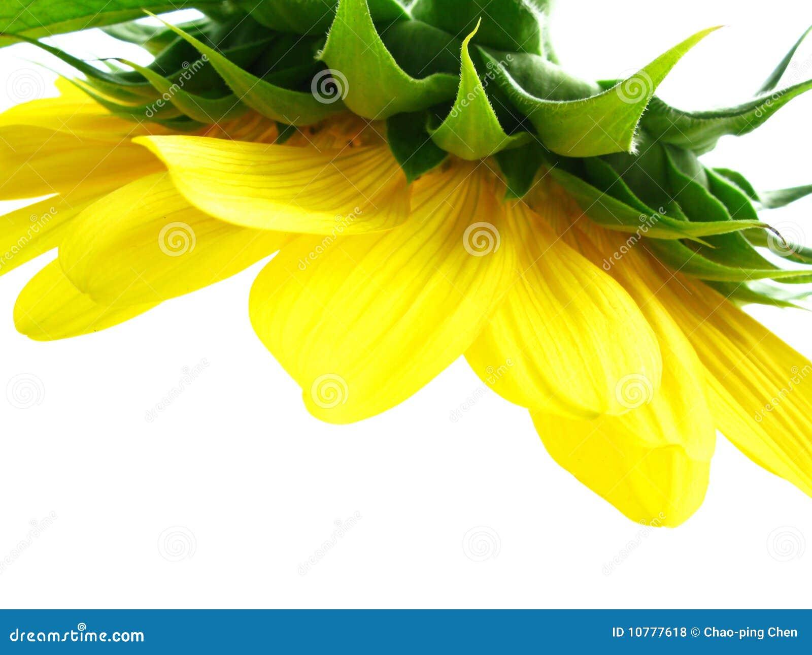 Een gele kroonluchter