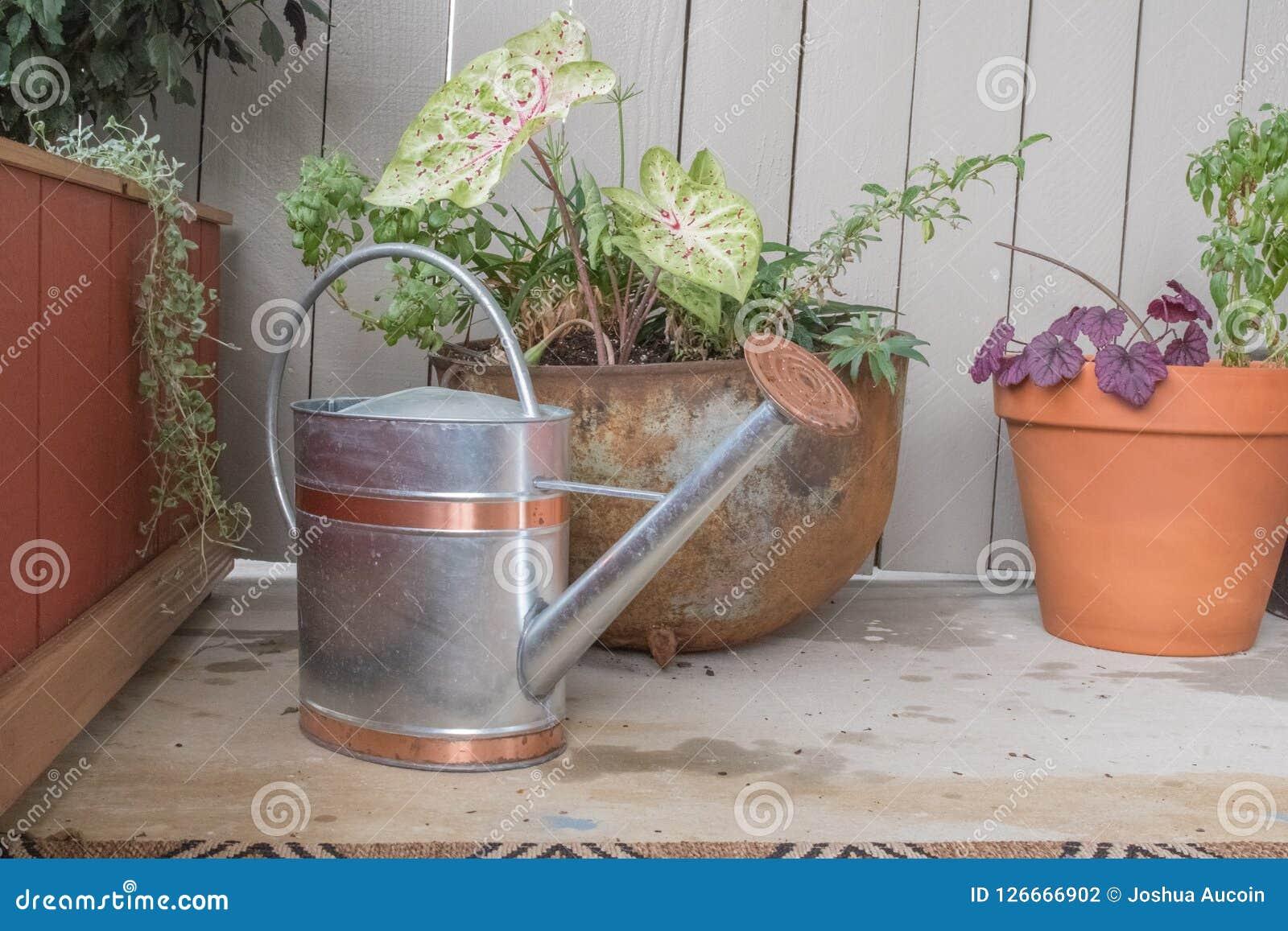 Een gieter zit naast wat water gaf vers installaties