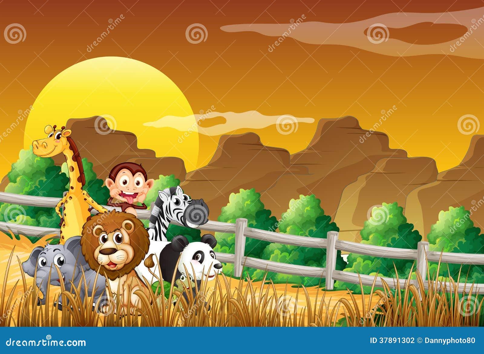 Een groep dieren bij het hout
