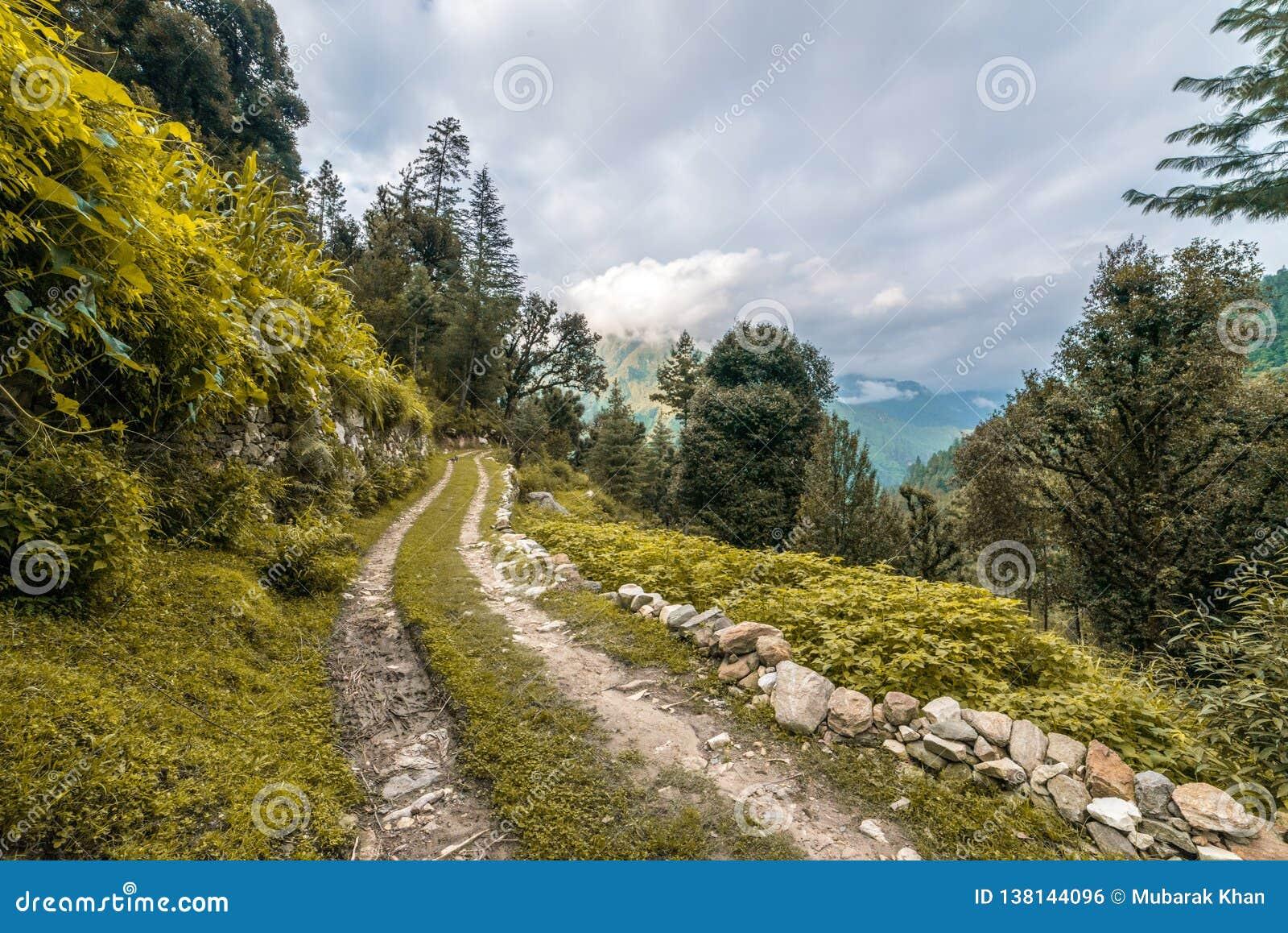 Een grondweg met gras, een kreupelbosje met bomen zonder bladeren en wolken op een blauwe hemel wordt behandeld die