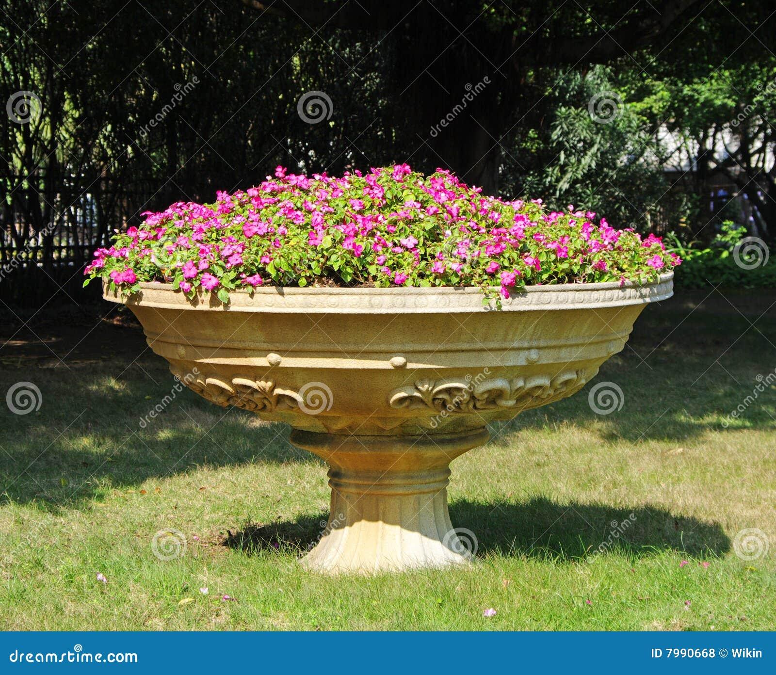Een Grote Bloempot Met Bloemen Royalty vrije Stock Foto u0026#39;s   Afbeelding  7990668