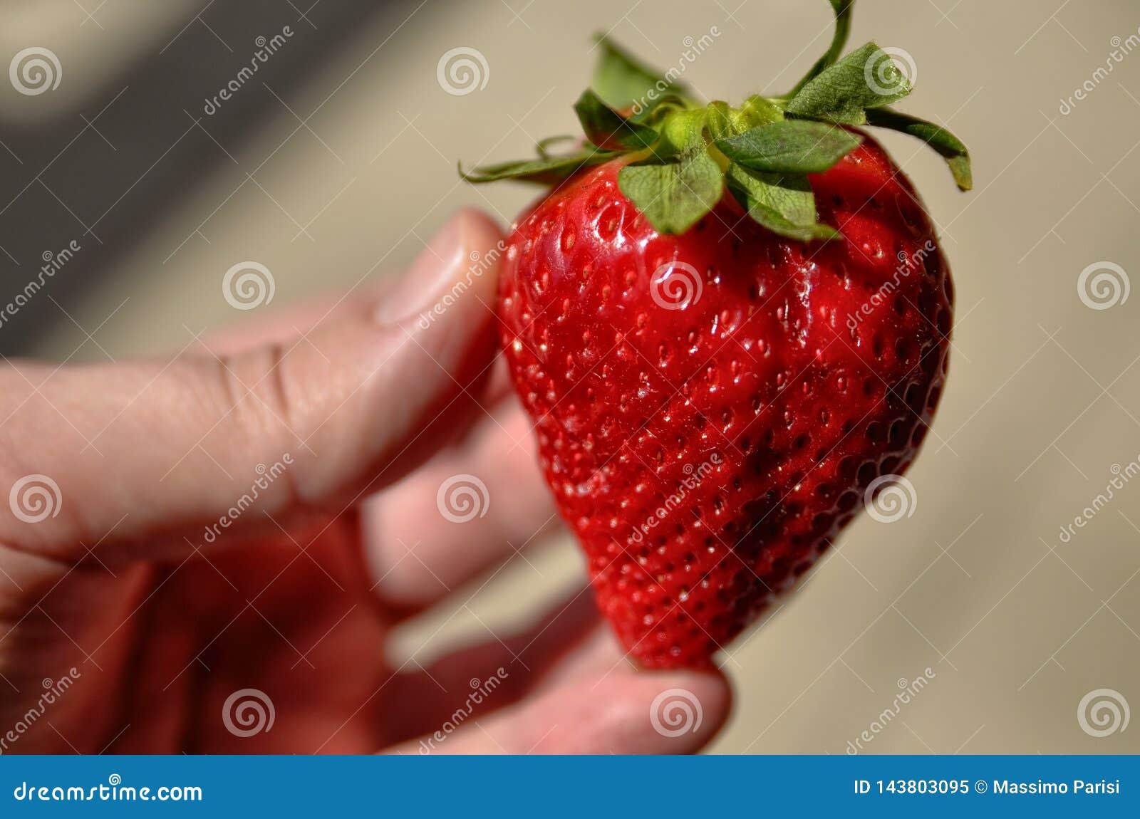 Een grote heldere rode aardbei