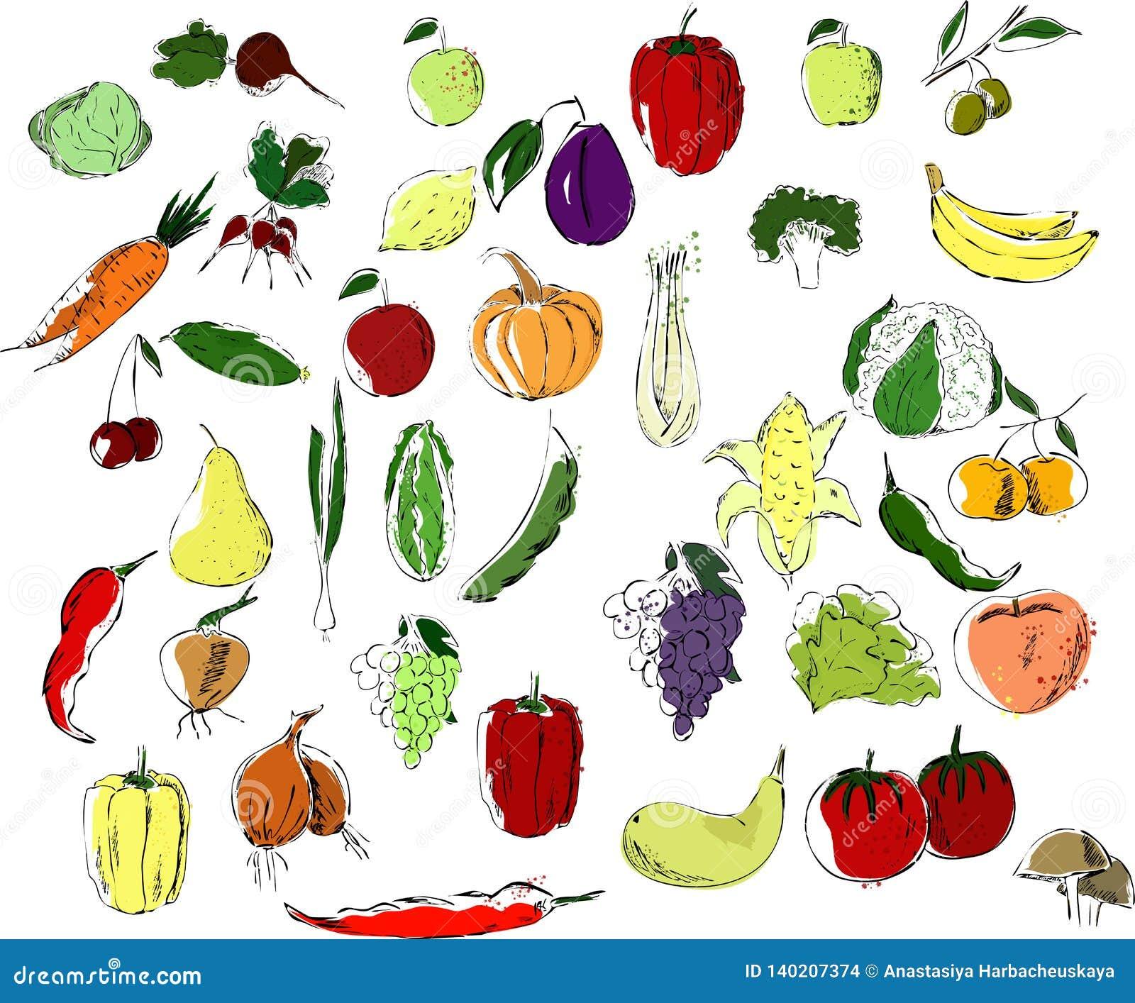 Een grote reeks van veelkleurige vruchten en groentenzwarte op een witte achtergrond