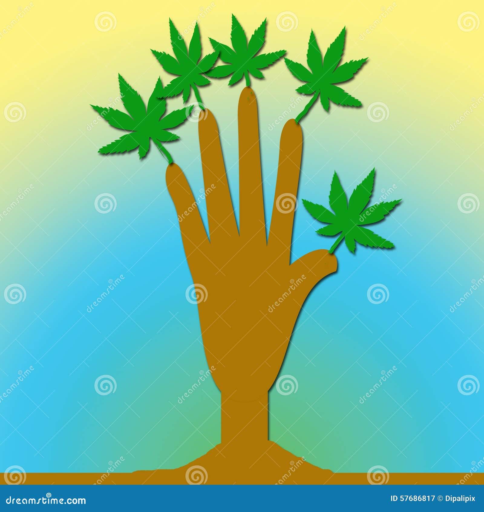 Een hand met bladeren