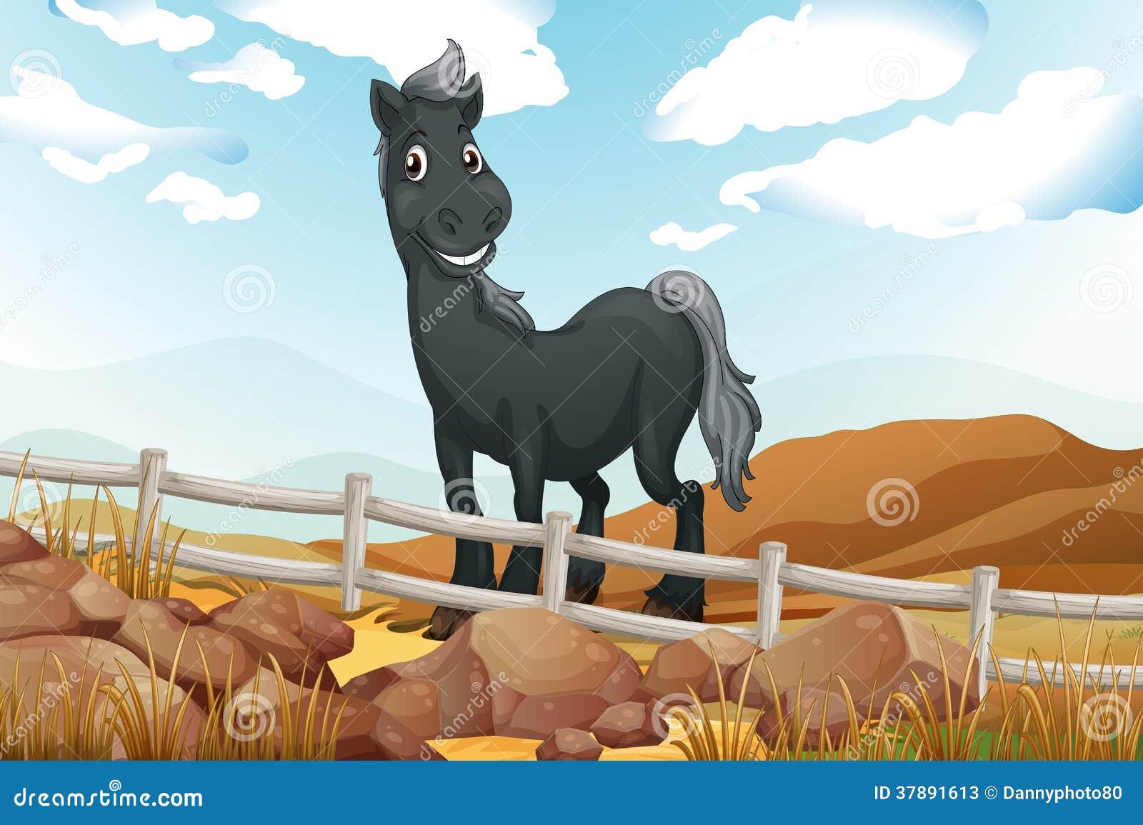 Een het glimlachen grijs paard dichtbij de houten omheining