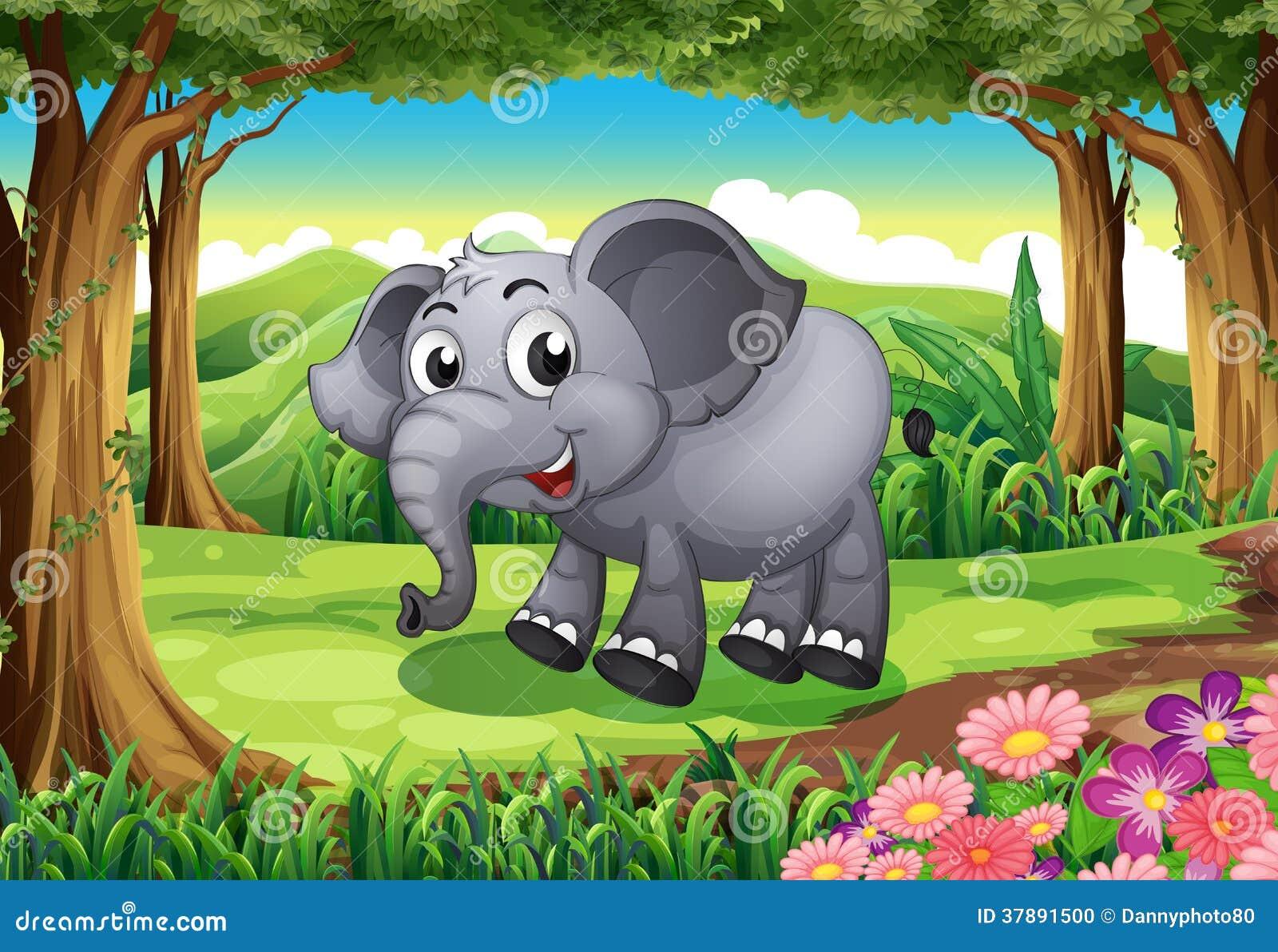 Een het glimlachen olifant bij het bos