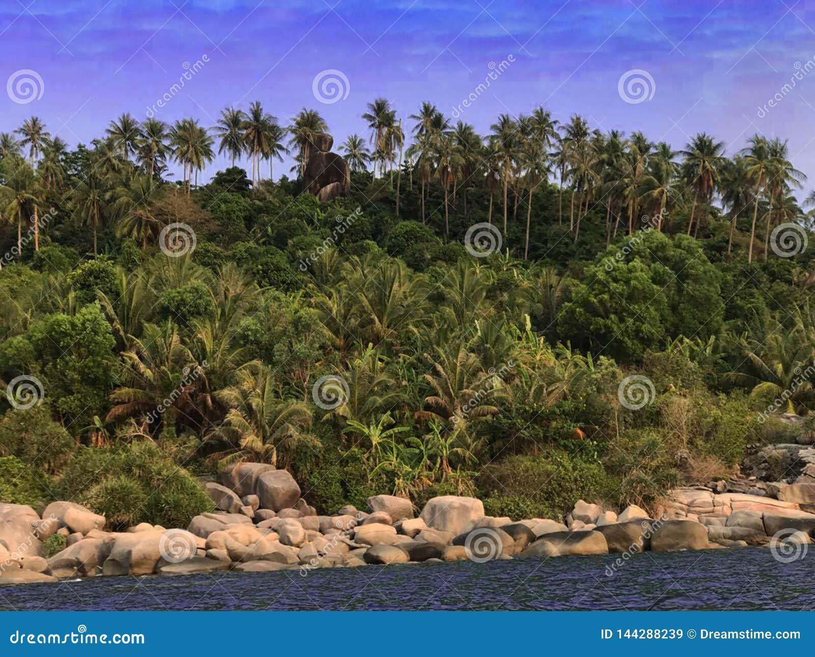 Een hoek van het eiland