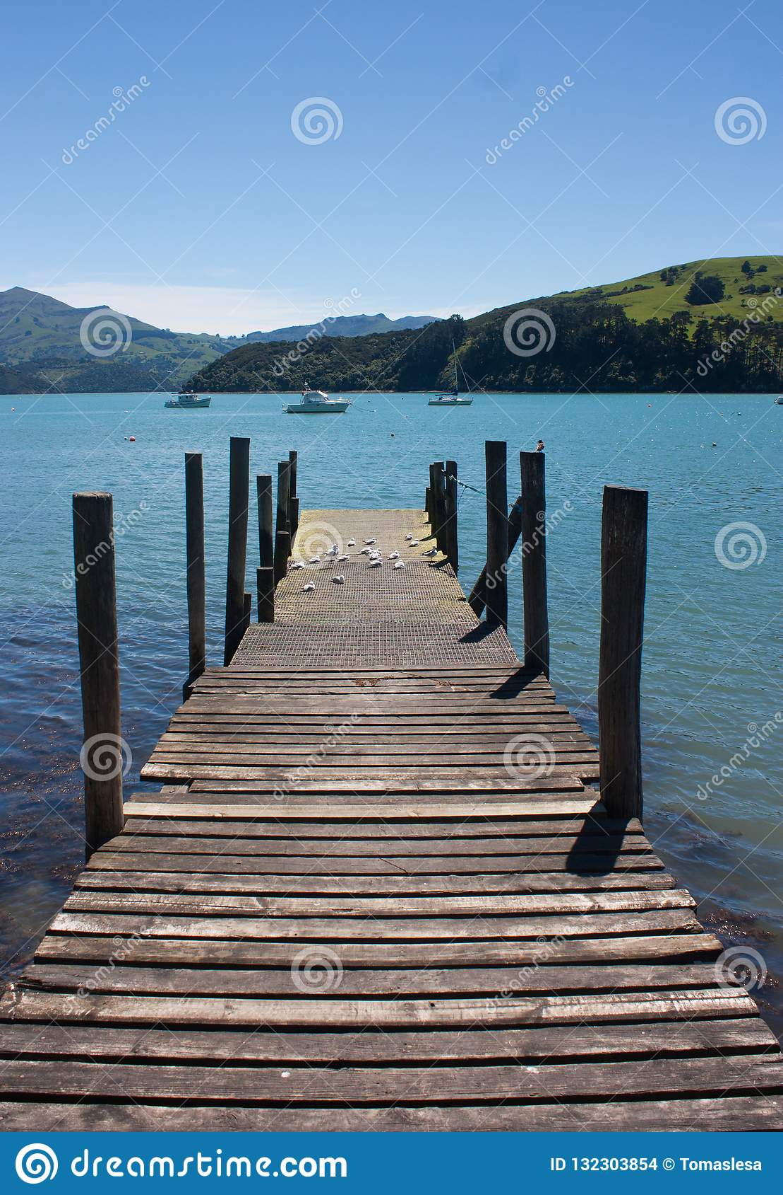 Een houten pijler, een overzees en groene heuvels in Akaroa dichtbij Christchurch in het Zuideneiland in Nieuw Zeeland