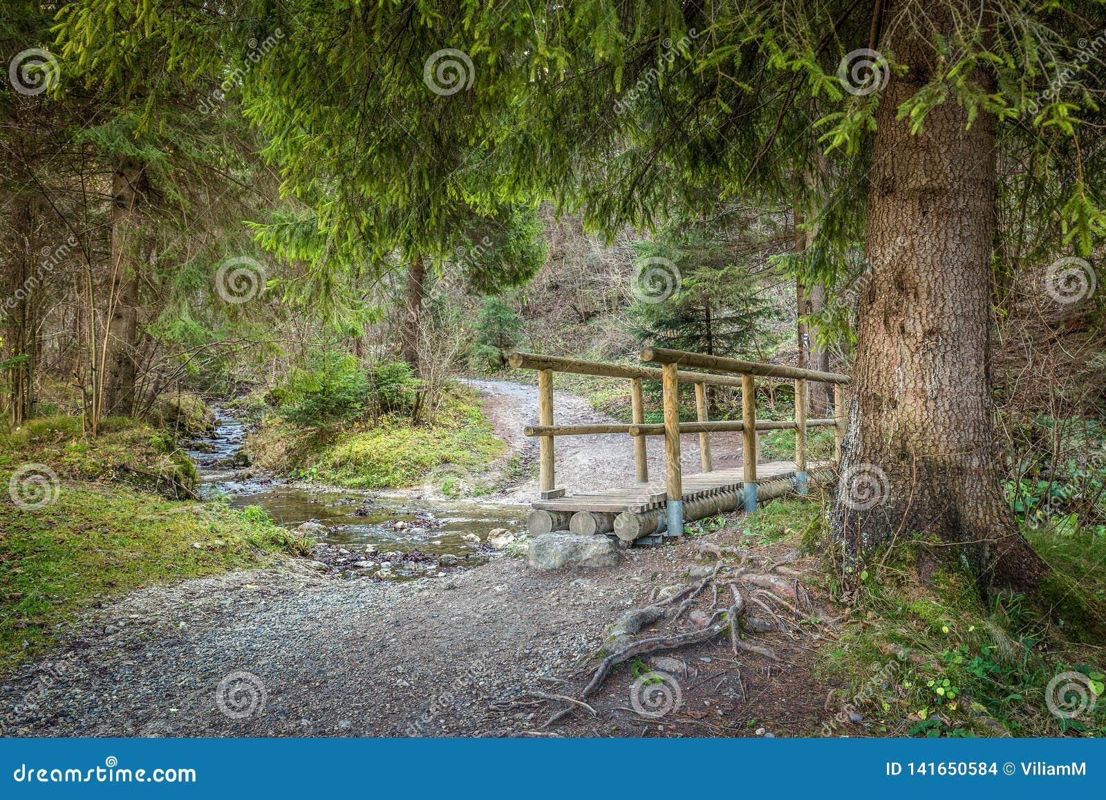 Een houten voetgangersbrug over een stroom in een bos