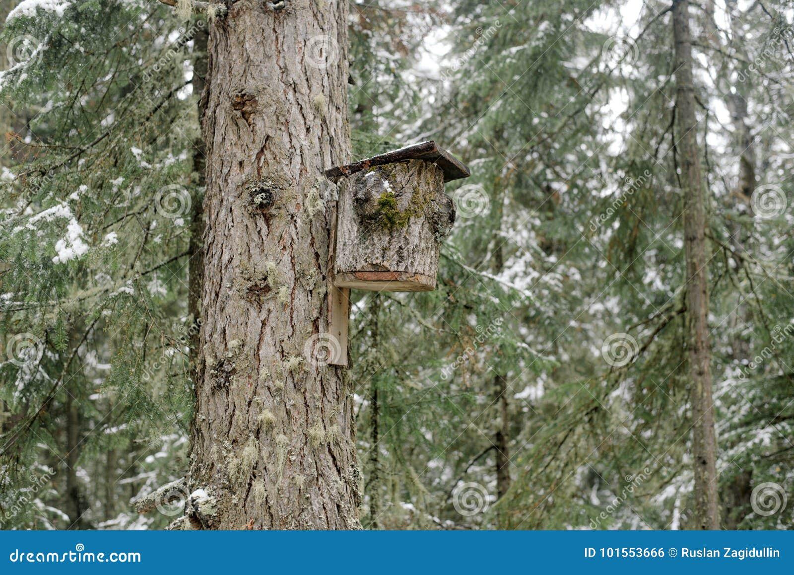 Een huis voor vogels maakte van boomschors