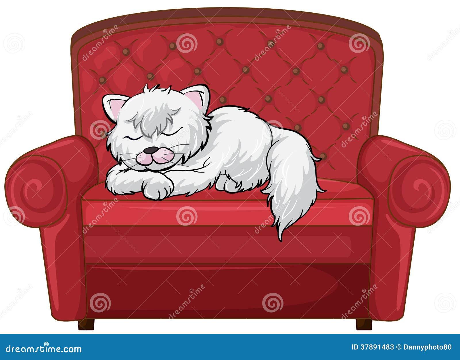 Een kattenslaap gezond bij de stoel