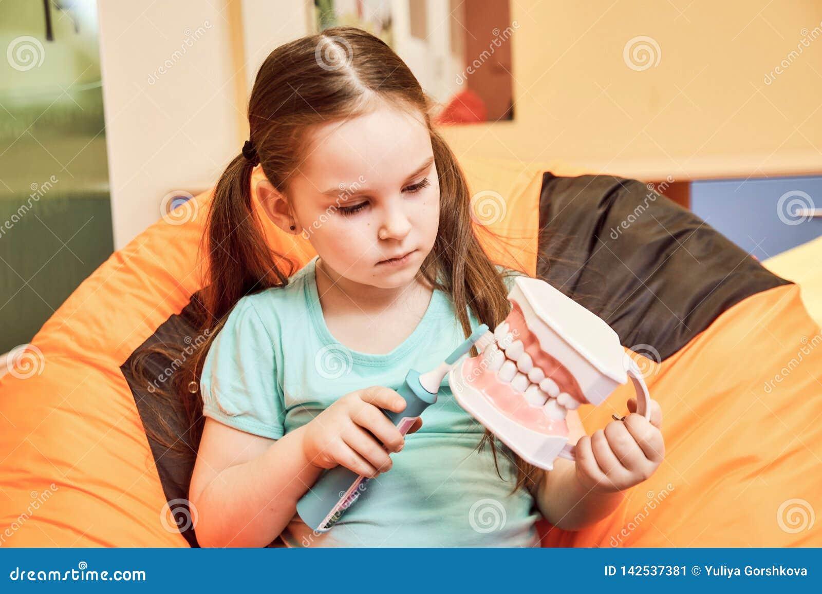 Een klein meisje in een tandkliniek die een tandmodel houden