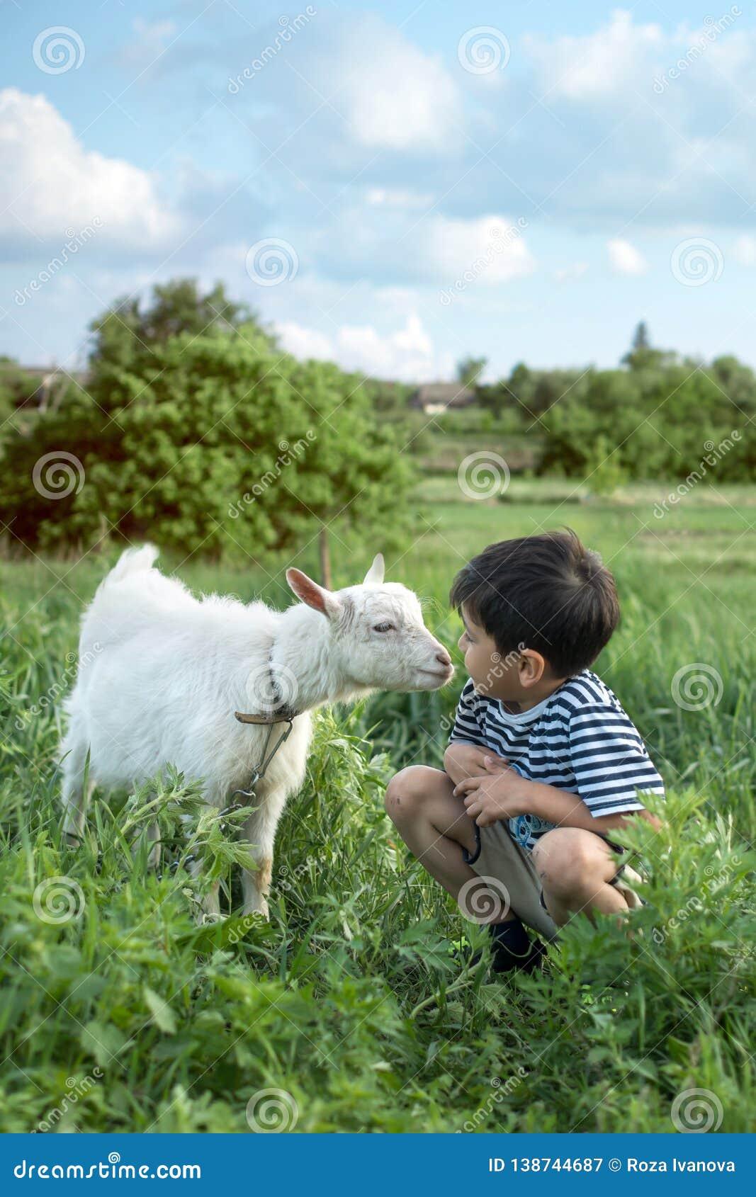 Een kleine jongen die gestript vest dragen hurkt en spreekt aan een witte geit op een gazon op een landbouwbedrijf zij elkaar att