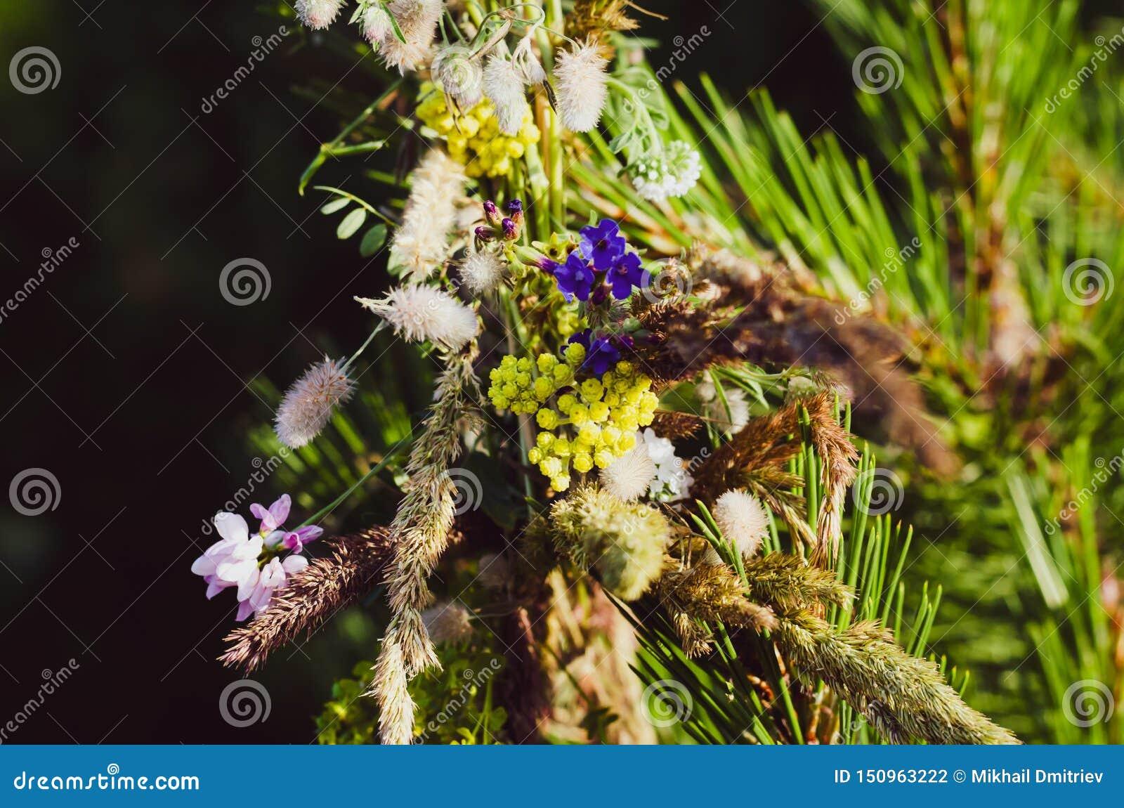 Een kroon van wilde bloemen en kruiden is vergeten op een pijnboomtak Het voorbereidingen treffen voor de Slavische vakantie van