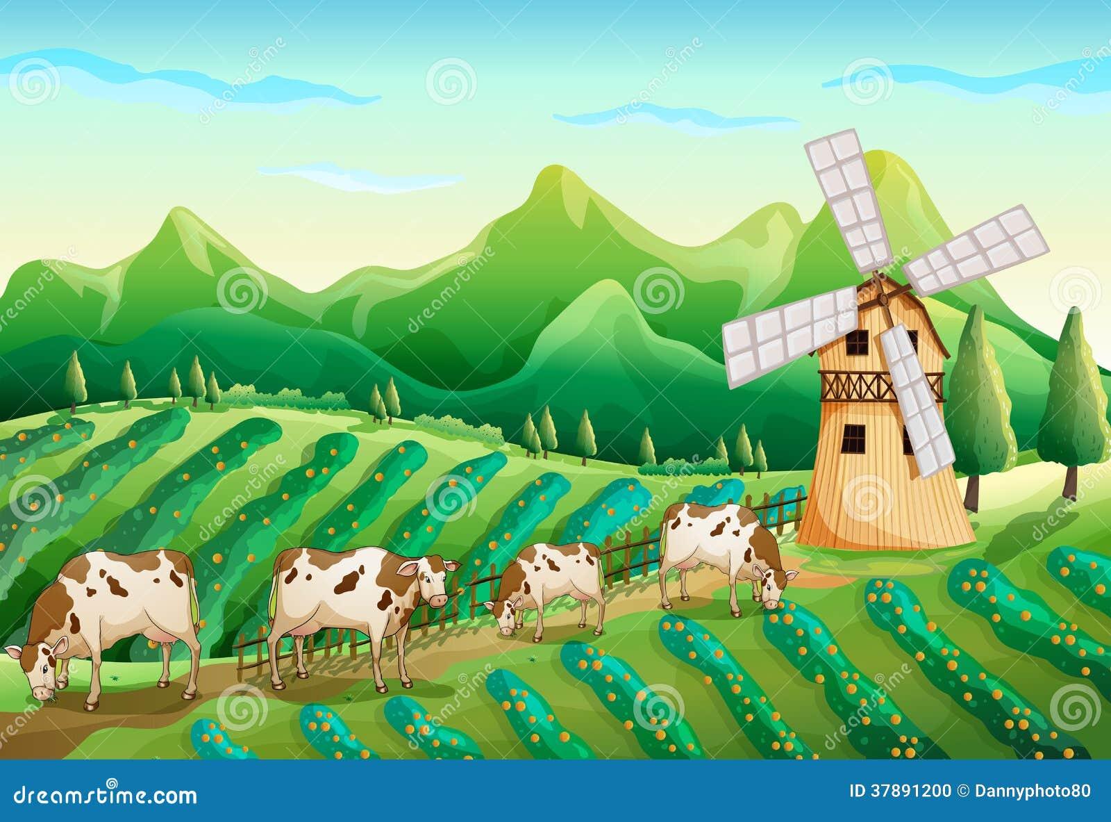 Een landbouwbedrijf met koeien