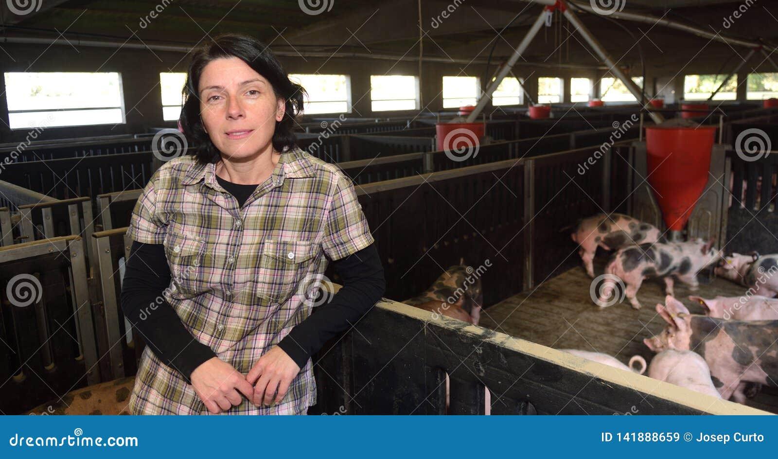 Een landbouwer in een varken van landbouwbedrijven