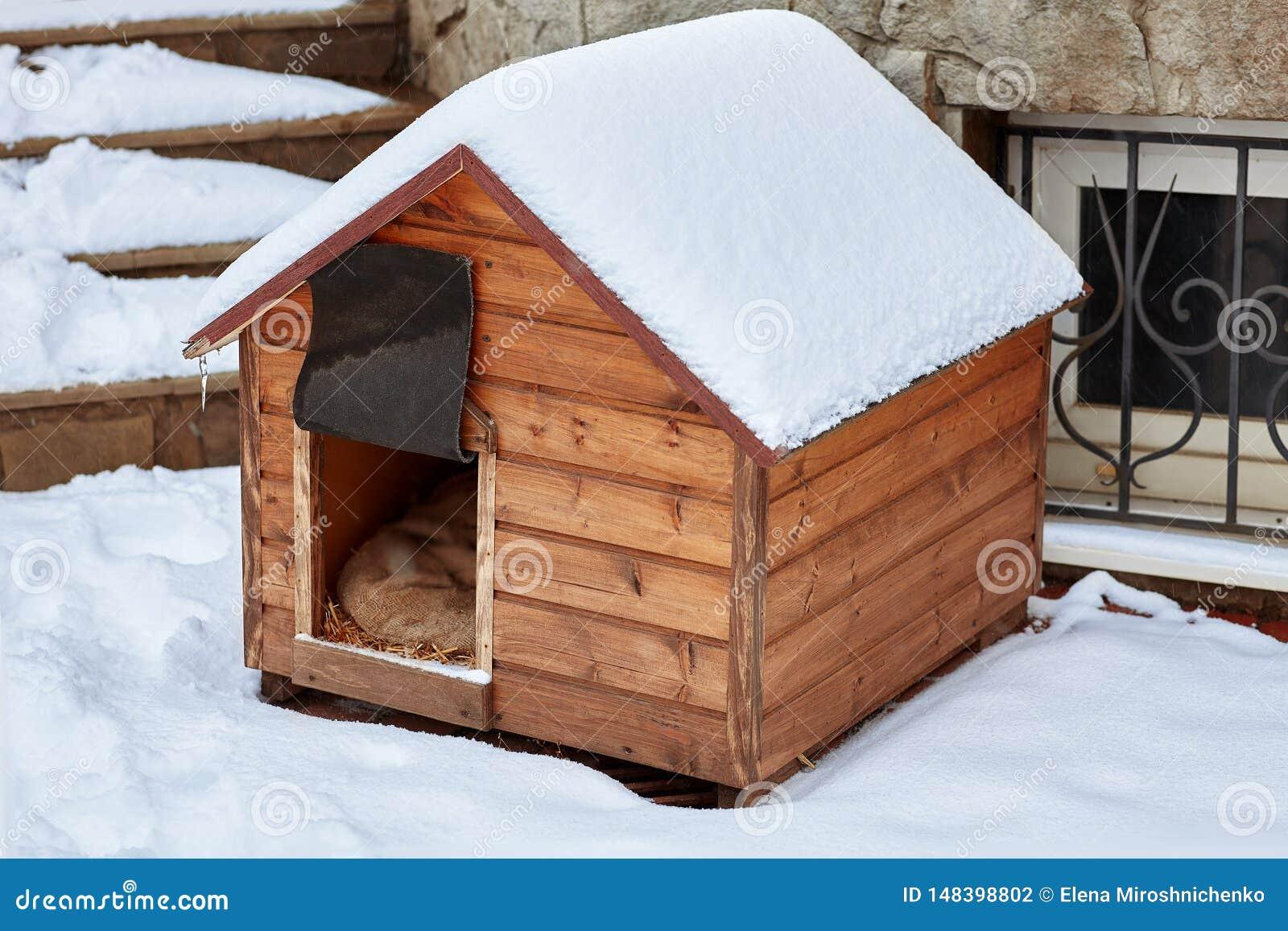 Een leeg houten hondhuis in de winter op de achterdieyard, met sneeuw wordt behandeld