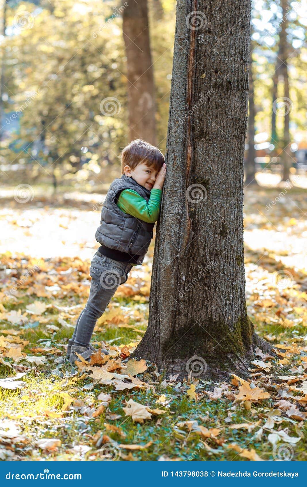 Een leuke kleine jongen die pret in het park in de herfst hebben