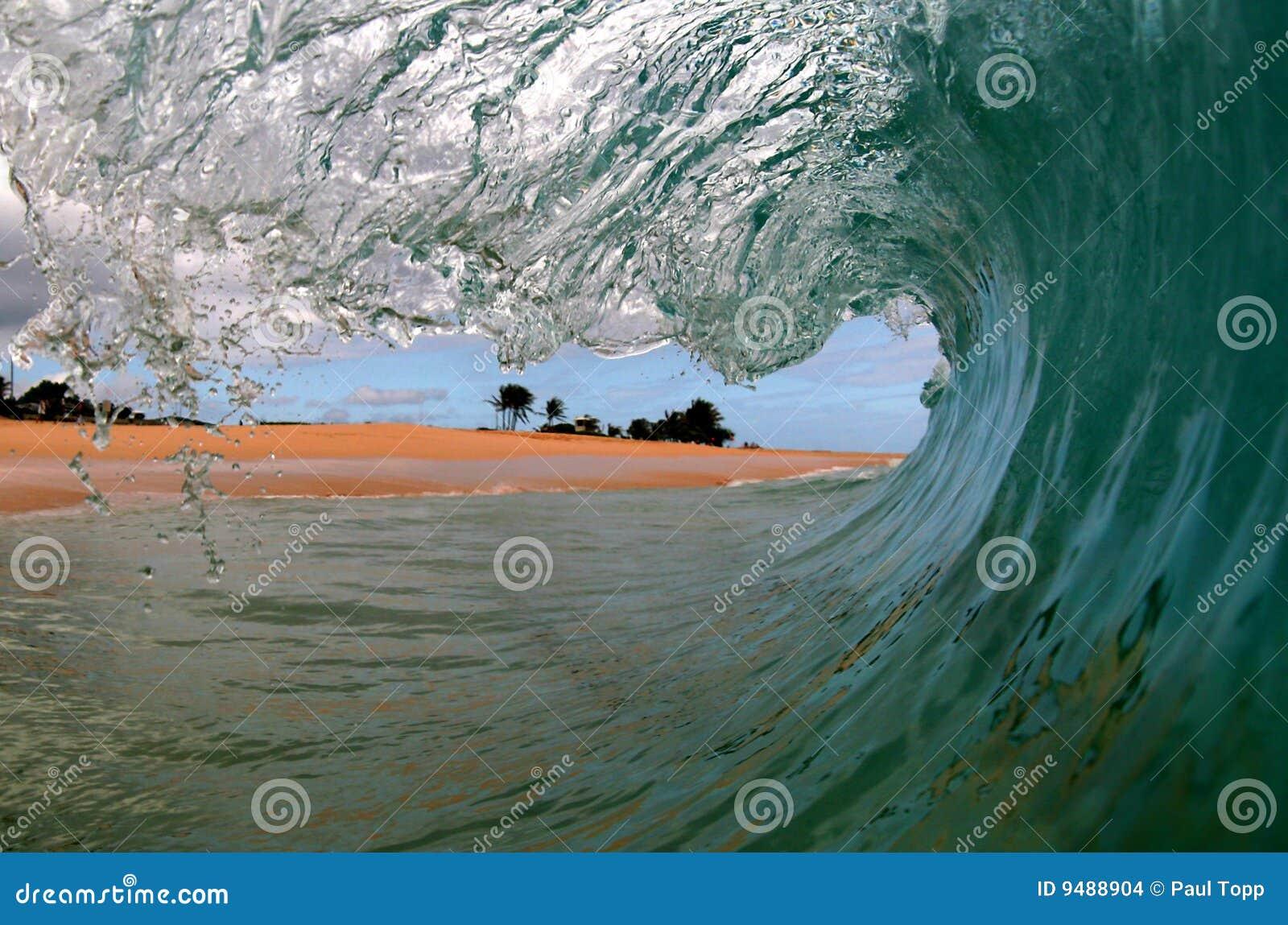 Een mening Surfers van een Golf