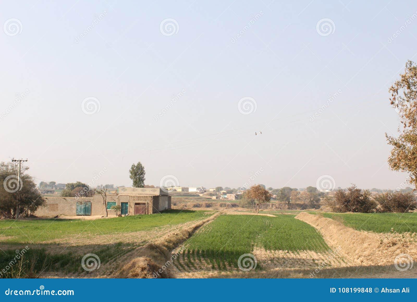 Een mening van het dorpsleven en gebieden