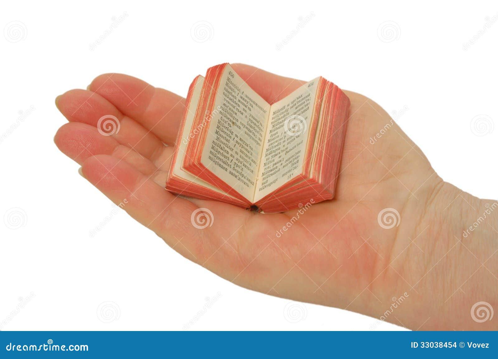 Een miniatuurboek op de palm