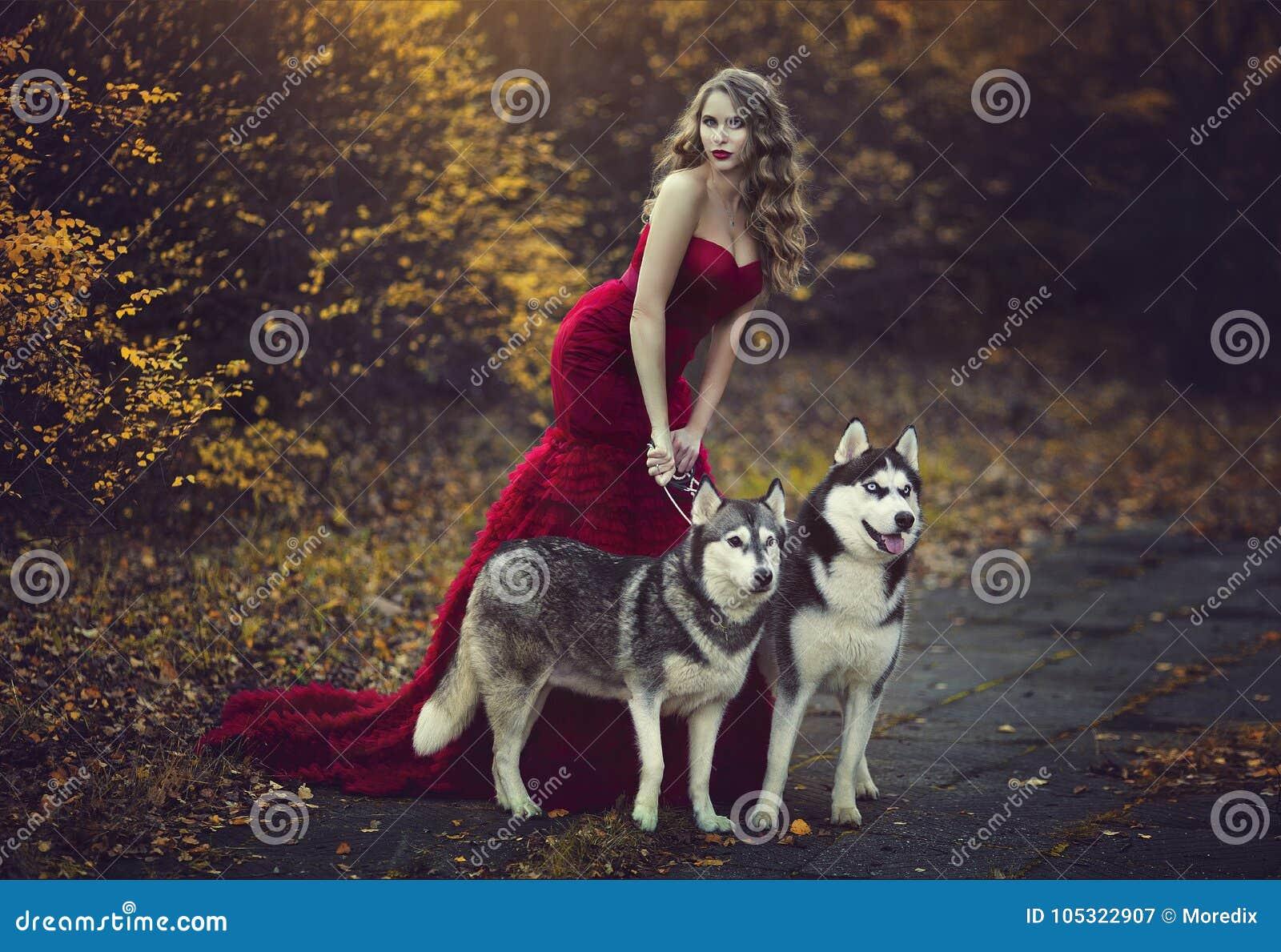 Een mooi blondemeisje in een elegante rode kleding, die met twee schor honden in een de herfstbos lopen
