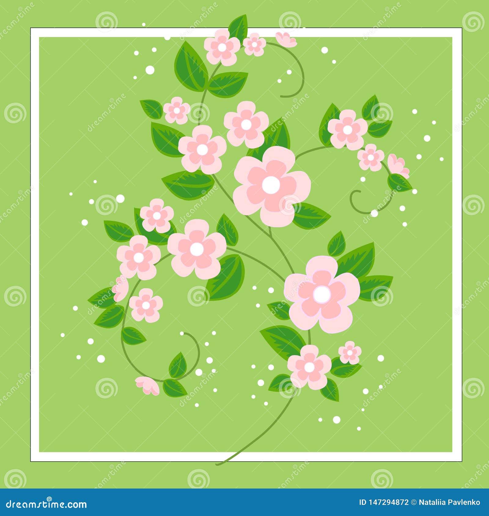 Een mooi boeket voor gelukwensen Gevoelige takken van roze bloemen De achtergrond van de lente Vector illustratie