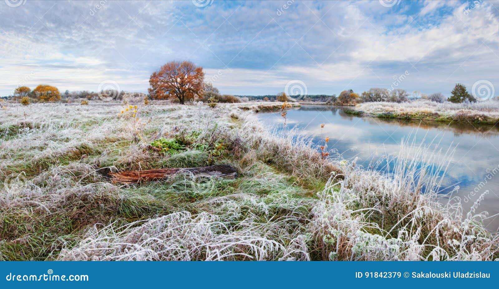 Een mooi de herfstlandschap met berijpt gras, een eenzame roodharigeeik, een rivier en een mooie bewolkte hemel