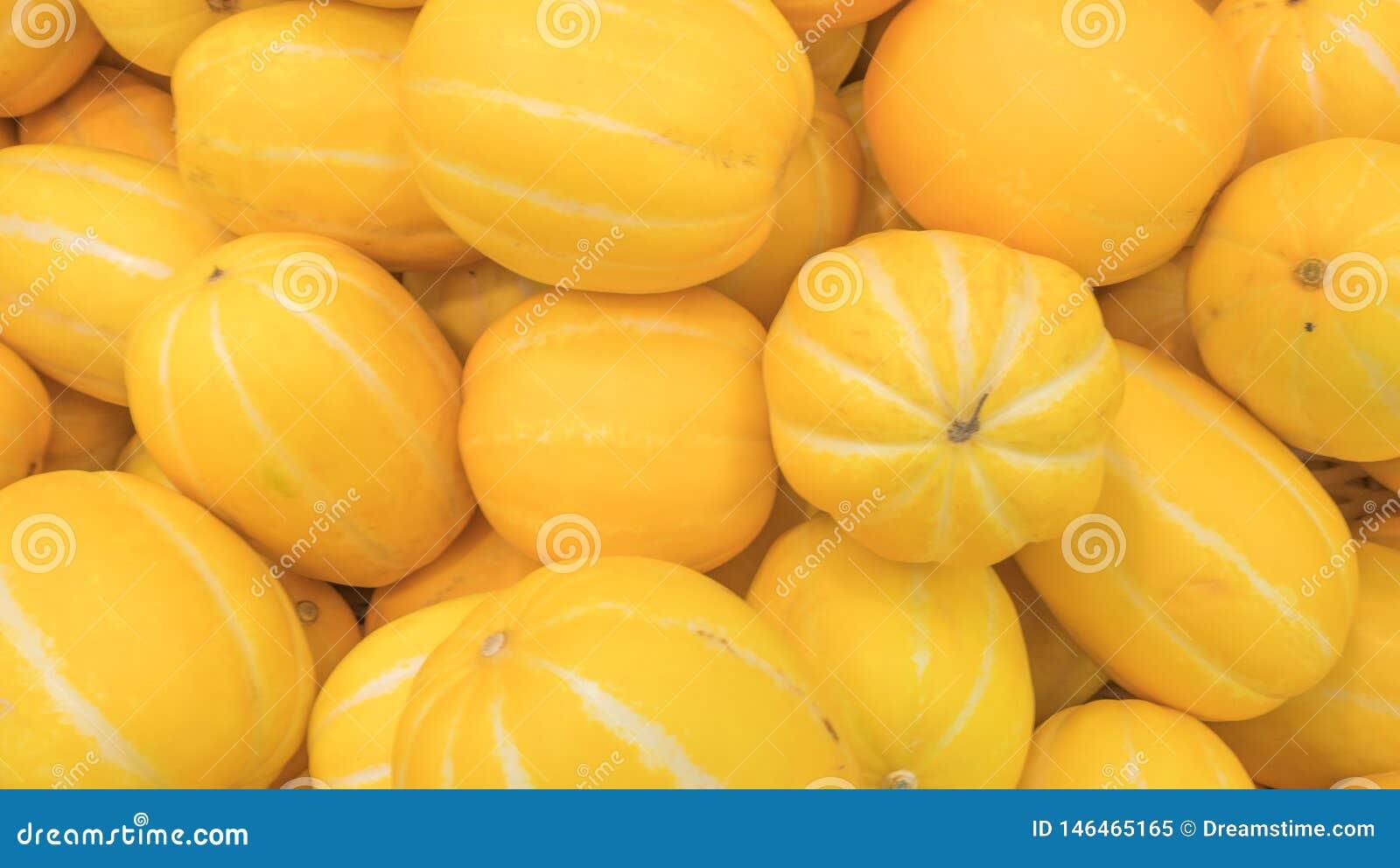 Een mooie gele die meloen in de markt wordt gevonden