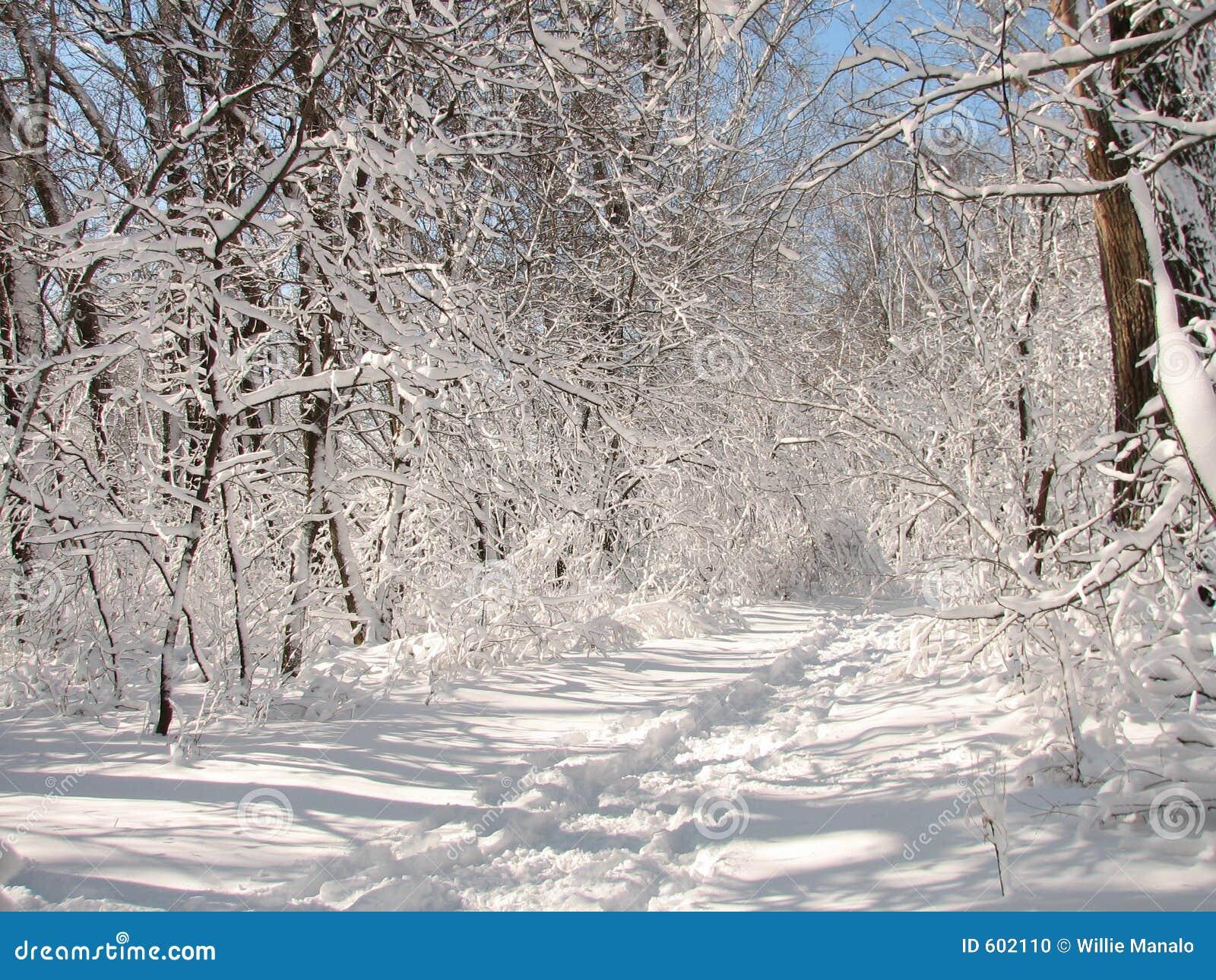Een ochtend van de Winter