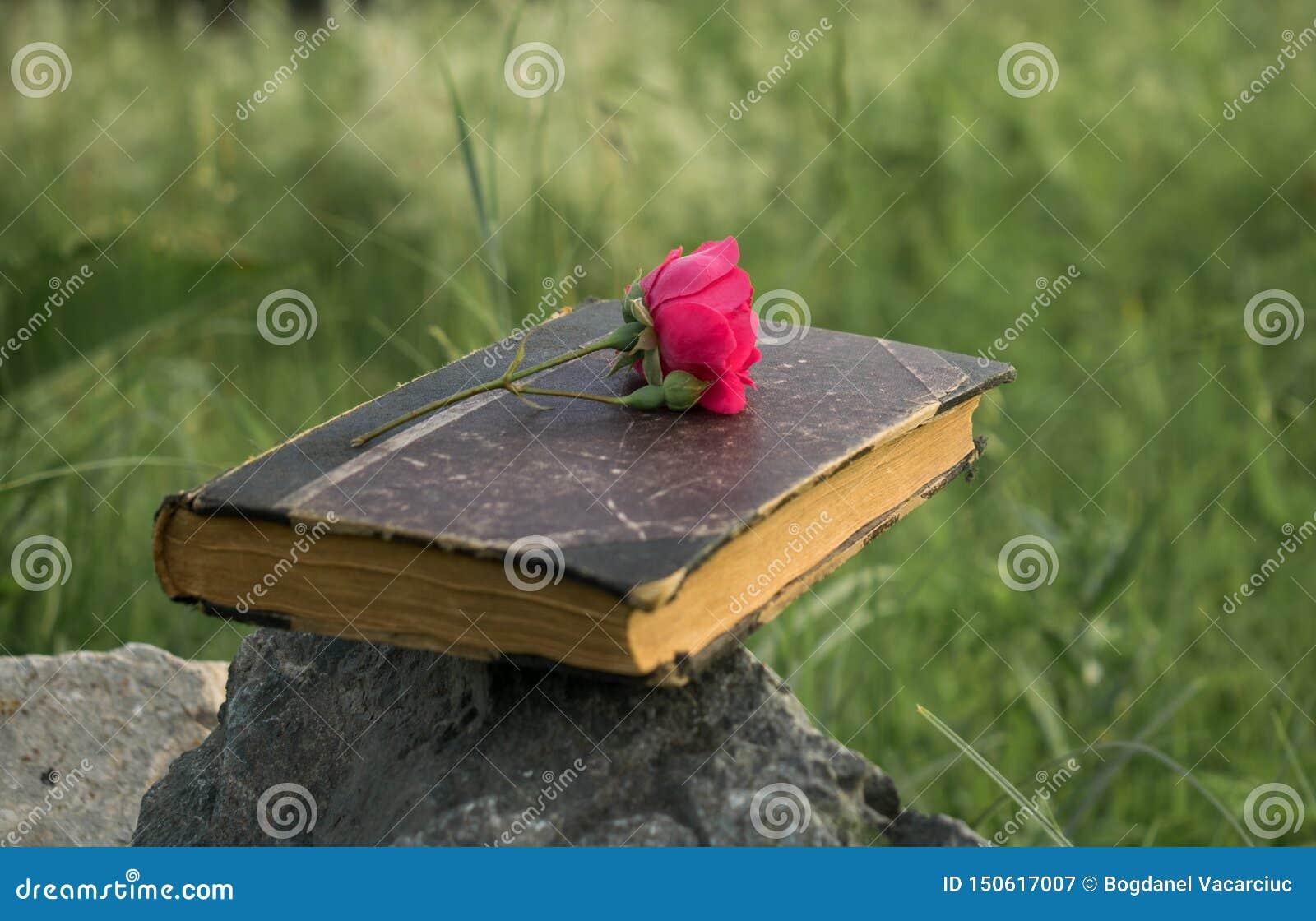 Een oud die boek op een steen wordt geplaatst, een rood nam op het boek toe
