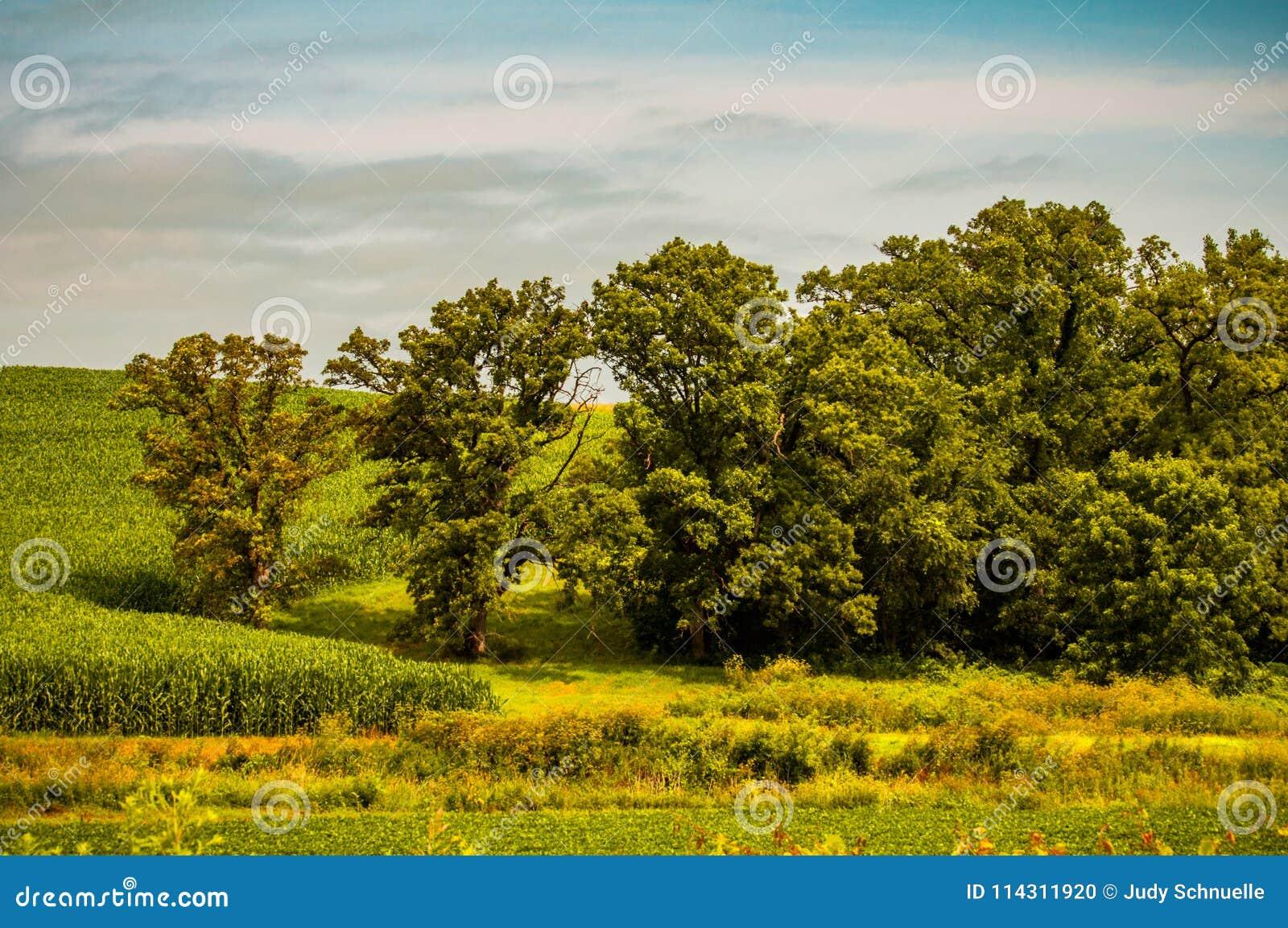 Een Overweldigend Landschap van Mooi Landelijk Iowa