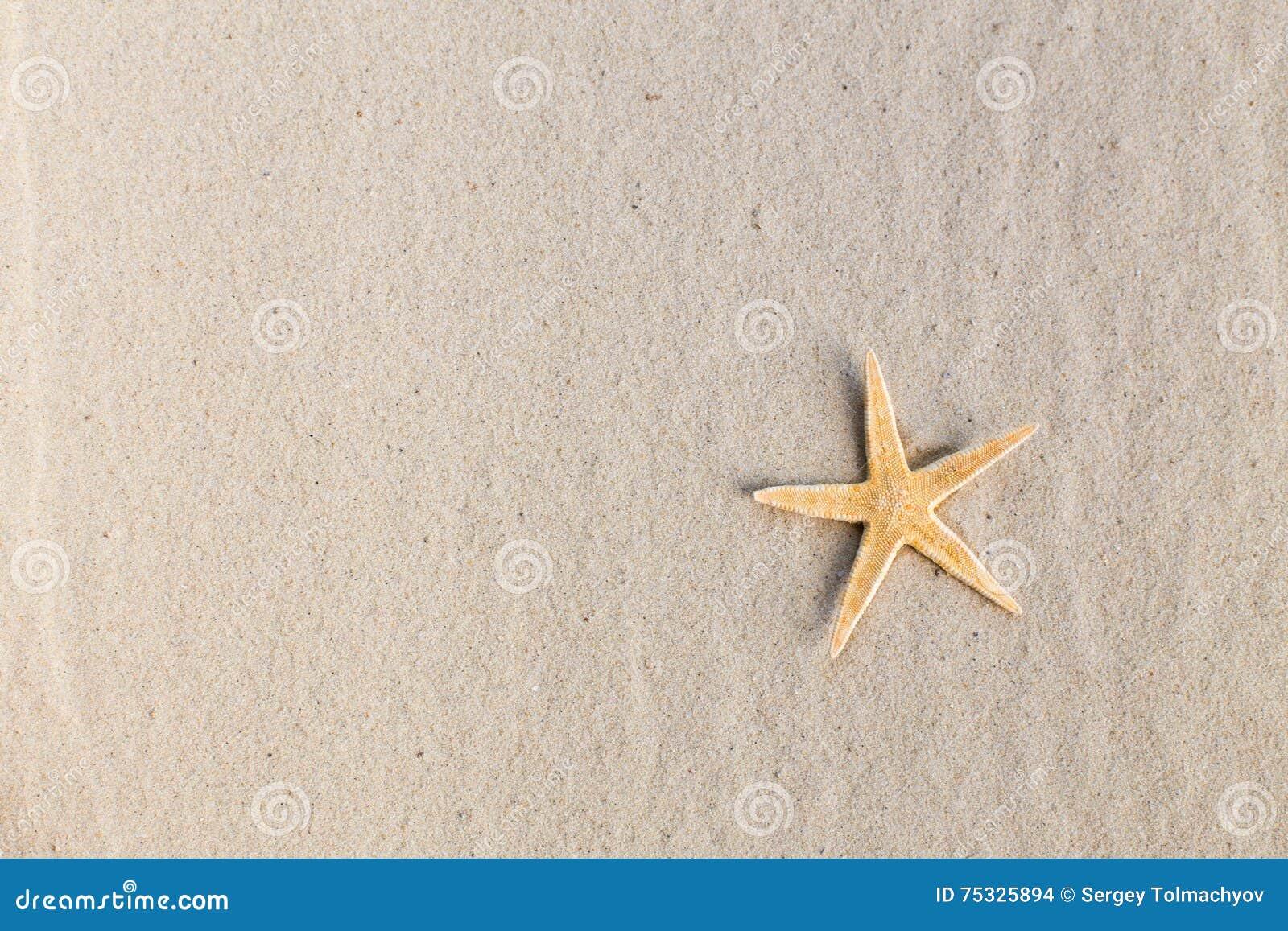 Een overzeese ster