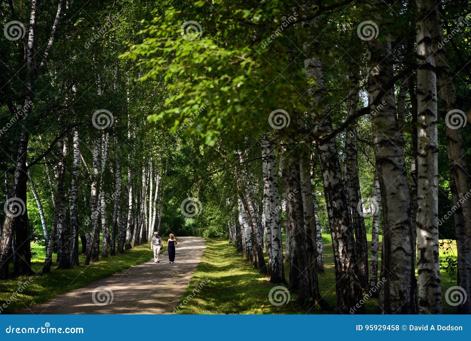 Een Paarwandeling bij Tolstoy-het Landgoed van het Land