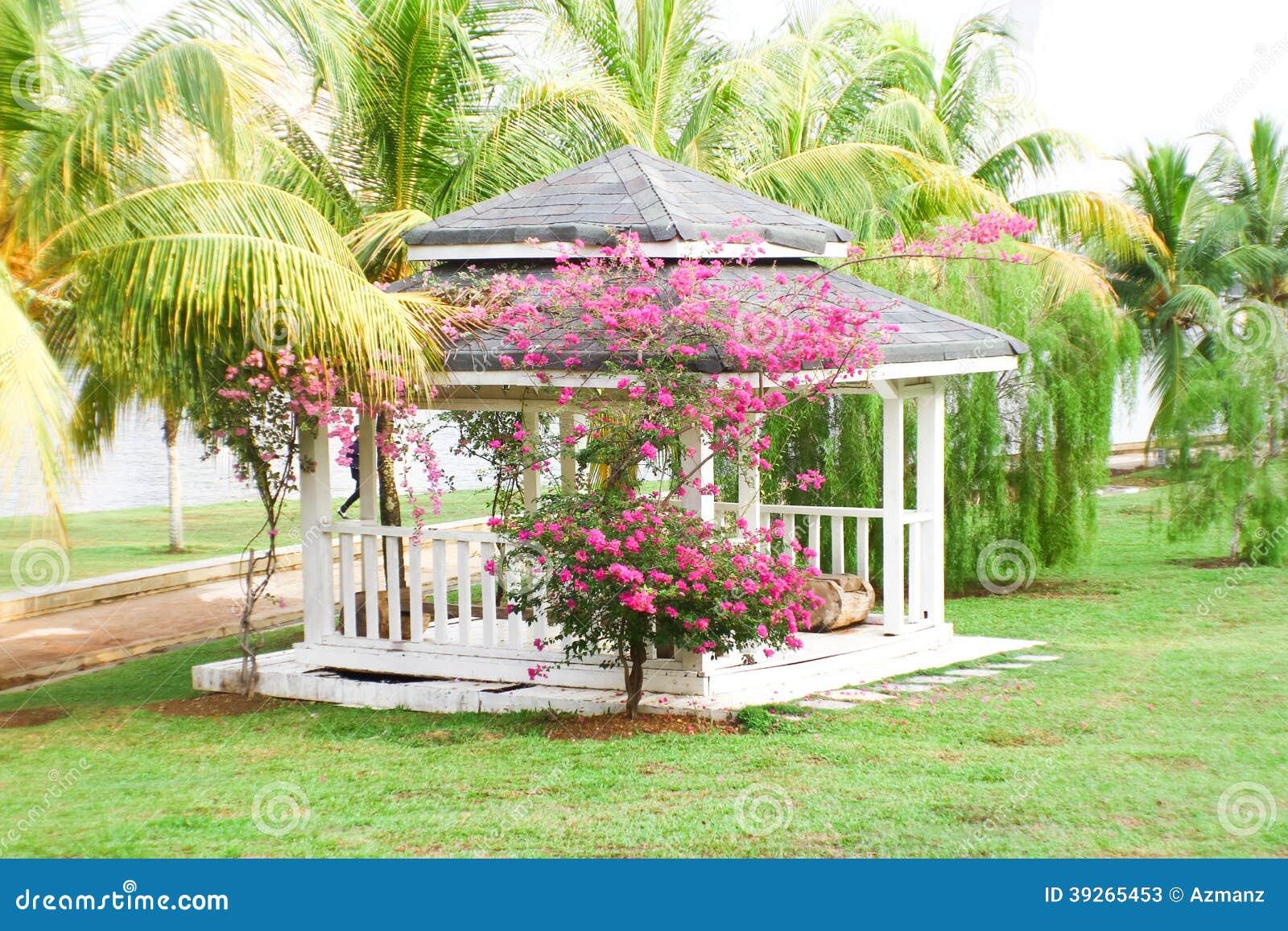 Een pergola in de tuin stock afbeelding afbeelding bestaande uit schuilplaats 39265453 - Pergola verkoop ...