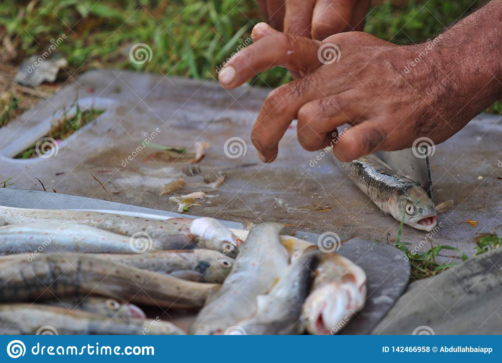 Een persoon het schoonmaken forel vist voor het koken bij een kampeerterrein