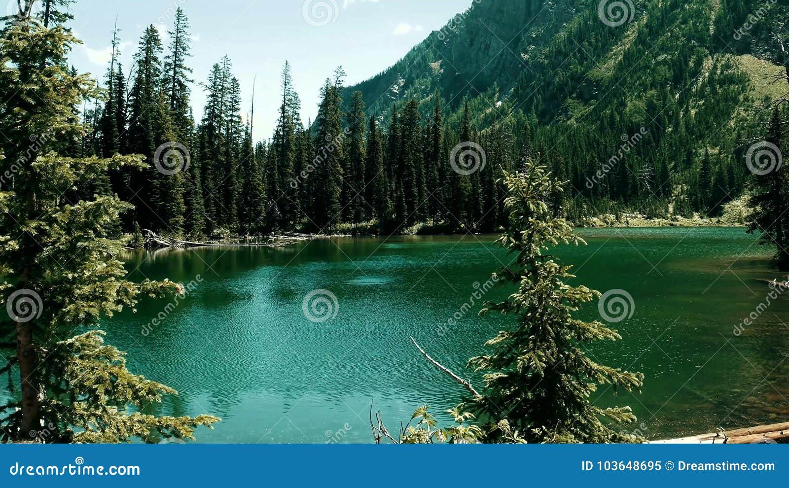 Een rivier onder rotsen en bossen