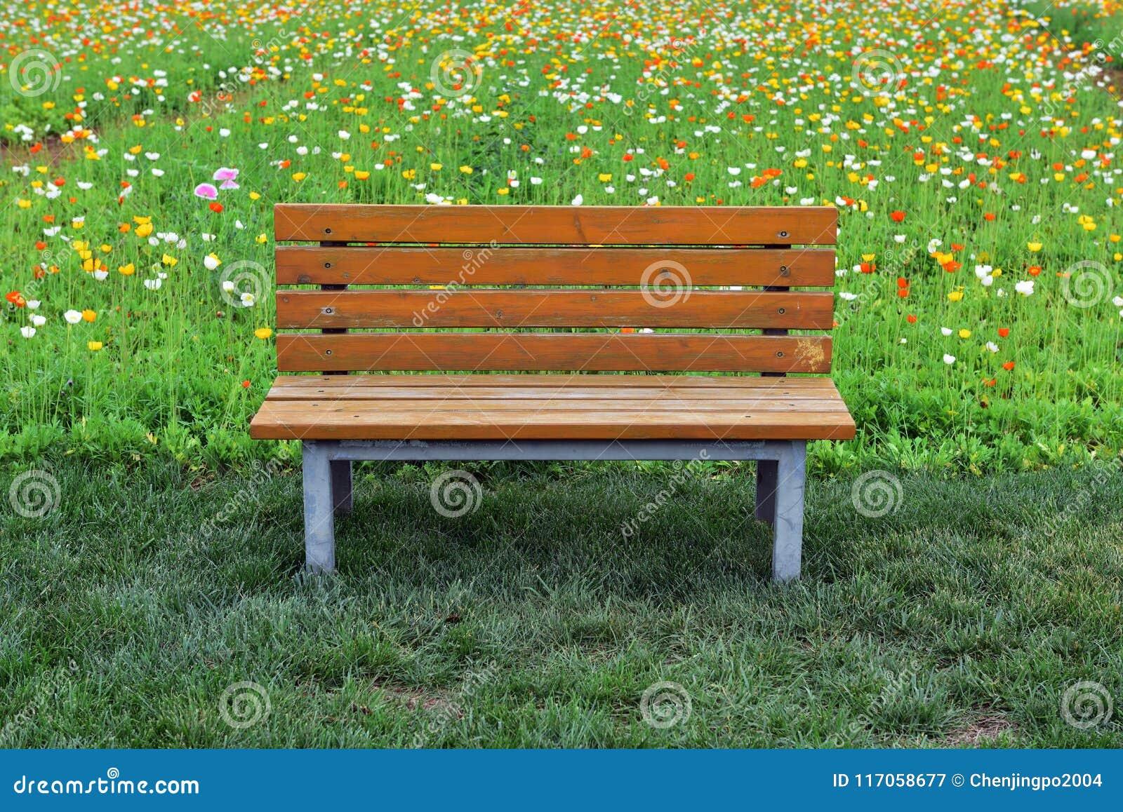 Een rust zetel in het park